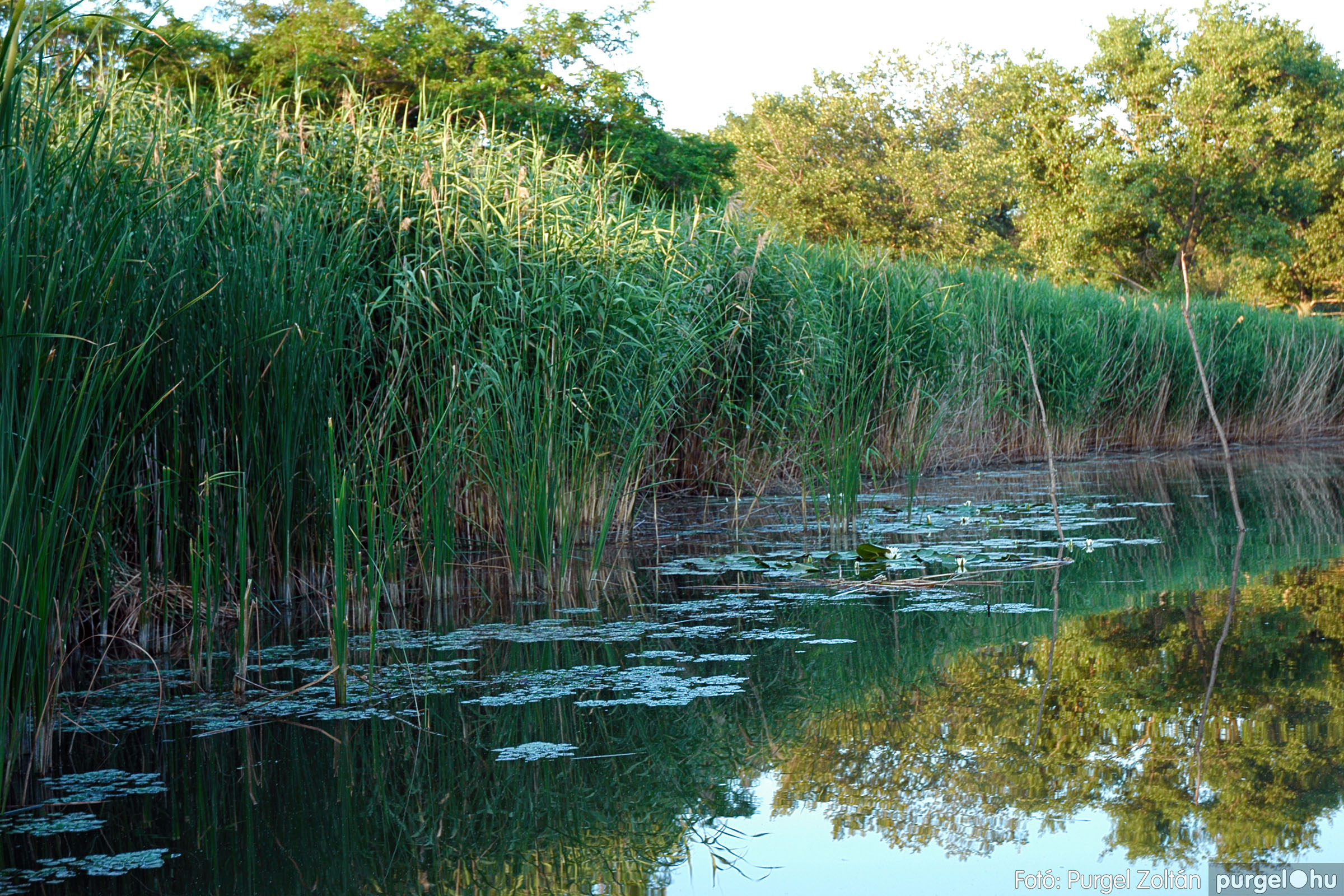2004.06.22. 028 Csónakázás a Kurcán - Fotó:PURGEL ZOLTÁN© DSC_0065q.jpg