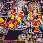 ISKCON Ahmedabad Deity Darshan 01 Aug 2019