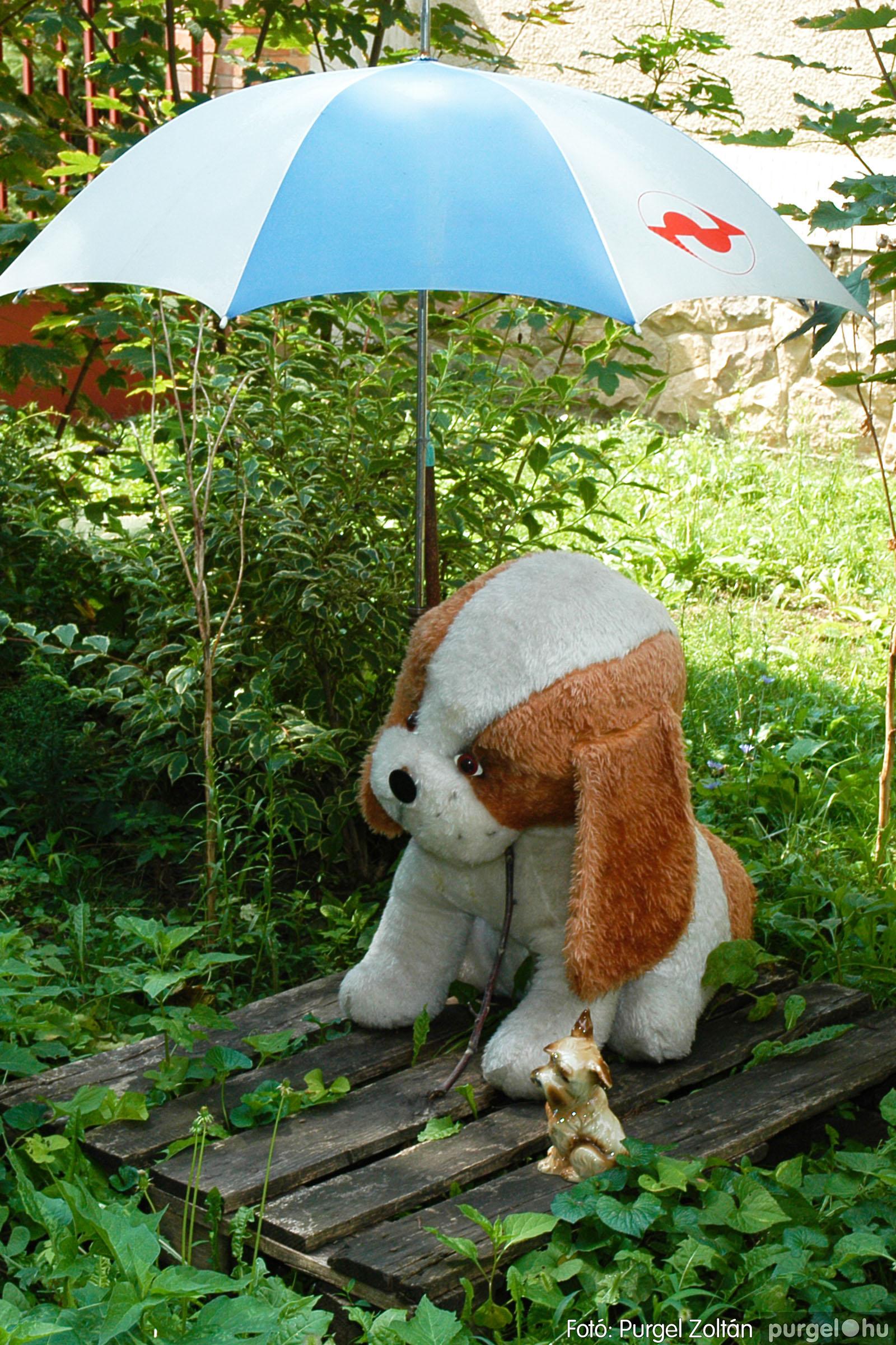 2004.08.21. 027 Szegvári falunapok 2004. 3. nap - Fotó:PURGEL ZOLTÁN© DSC_0029q.jpg