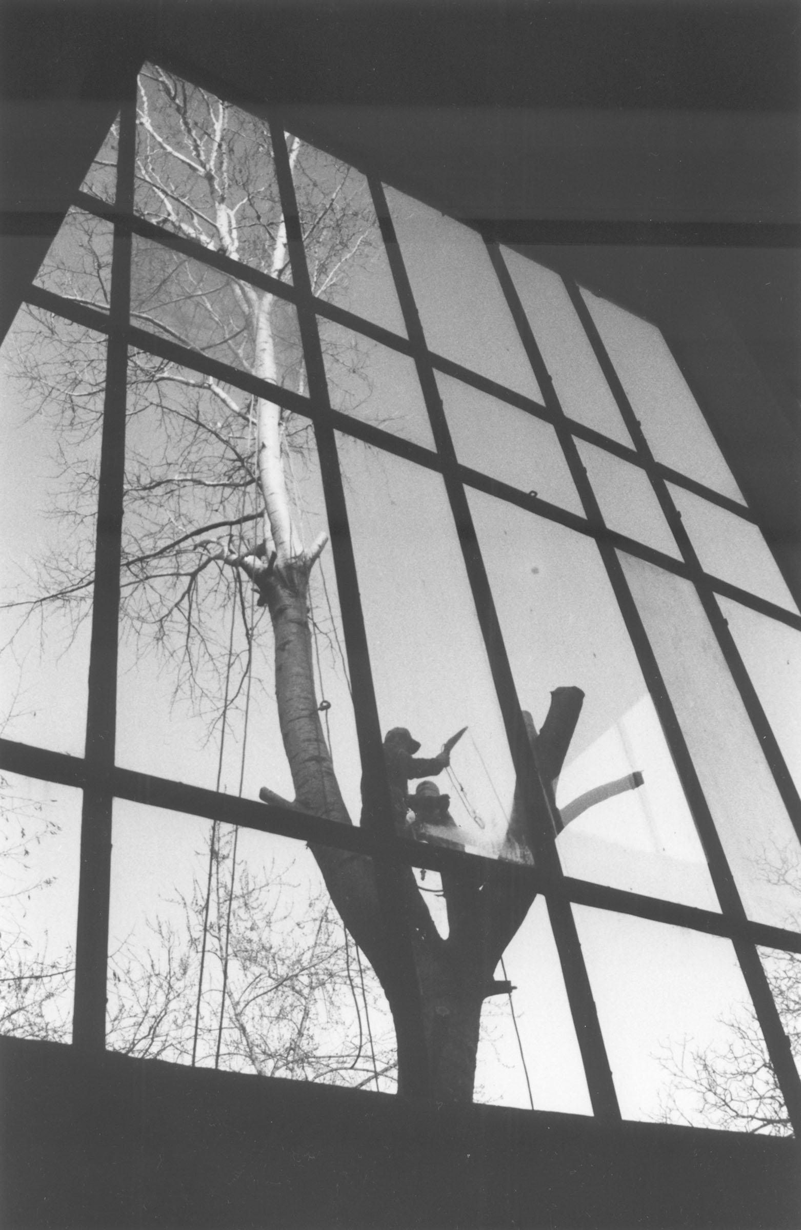 2004.09.18. Hétköznapok fotópályázat - Sebők Szilvia - Ember és természet.jpg