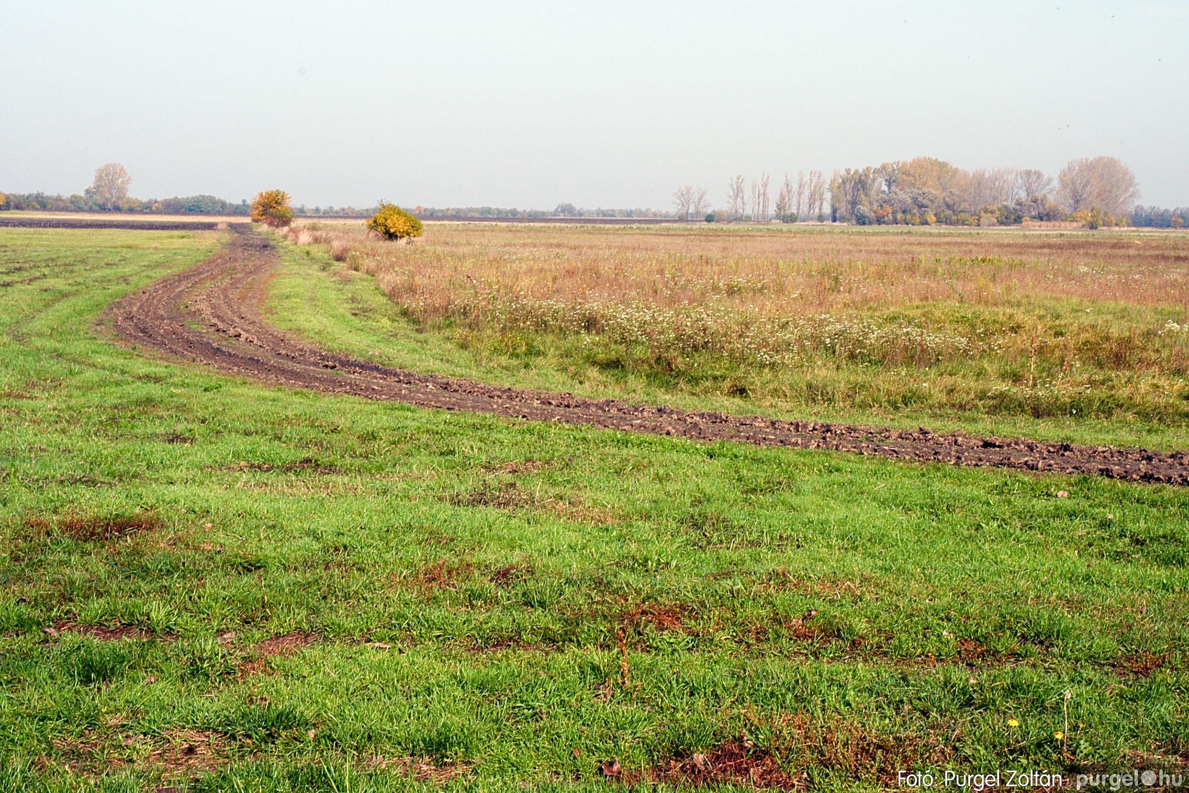 2004.10.26. 009 Az ősz színei Szegváron - Fotó:PURGEL ZOLTÁN© DSC_0026q.jpg