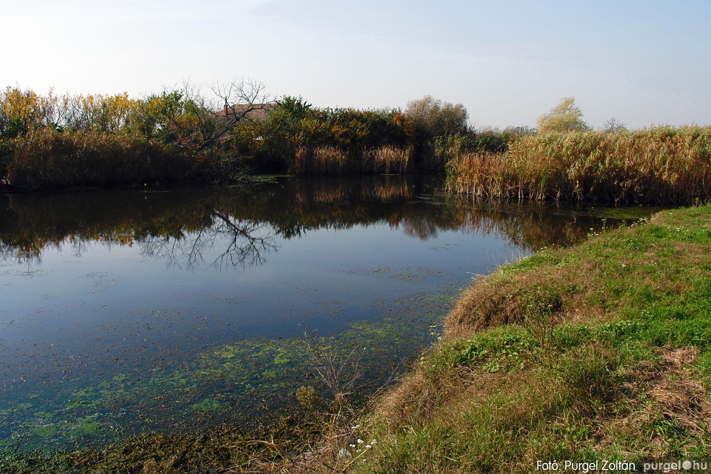 2004.10.26. 008 Az ősz színei Szegváron - Fotó:PURGEL ZOLTÁN© DSC_0025q.jpg