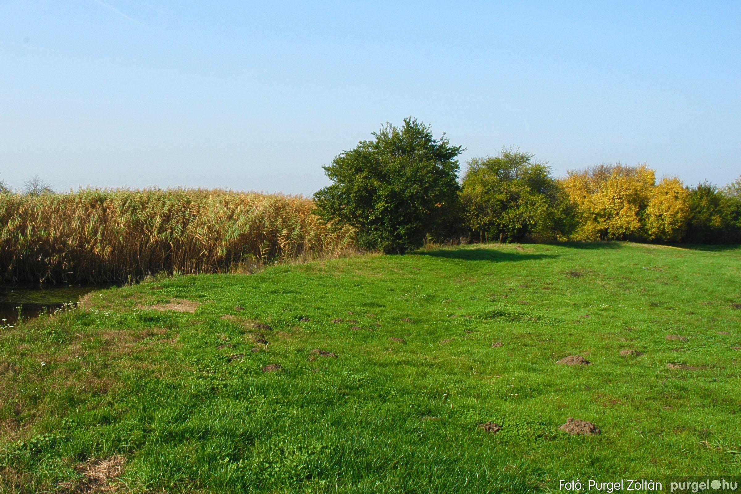 2004.10.26. 007 Az ősz színei Szegváron - Fotó:PURGEL ZOLTÁN© DSC_0024q.jpg