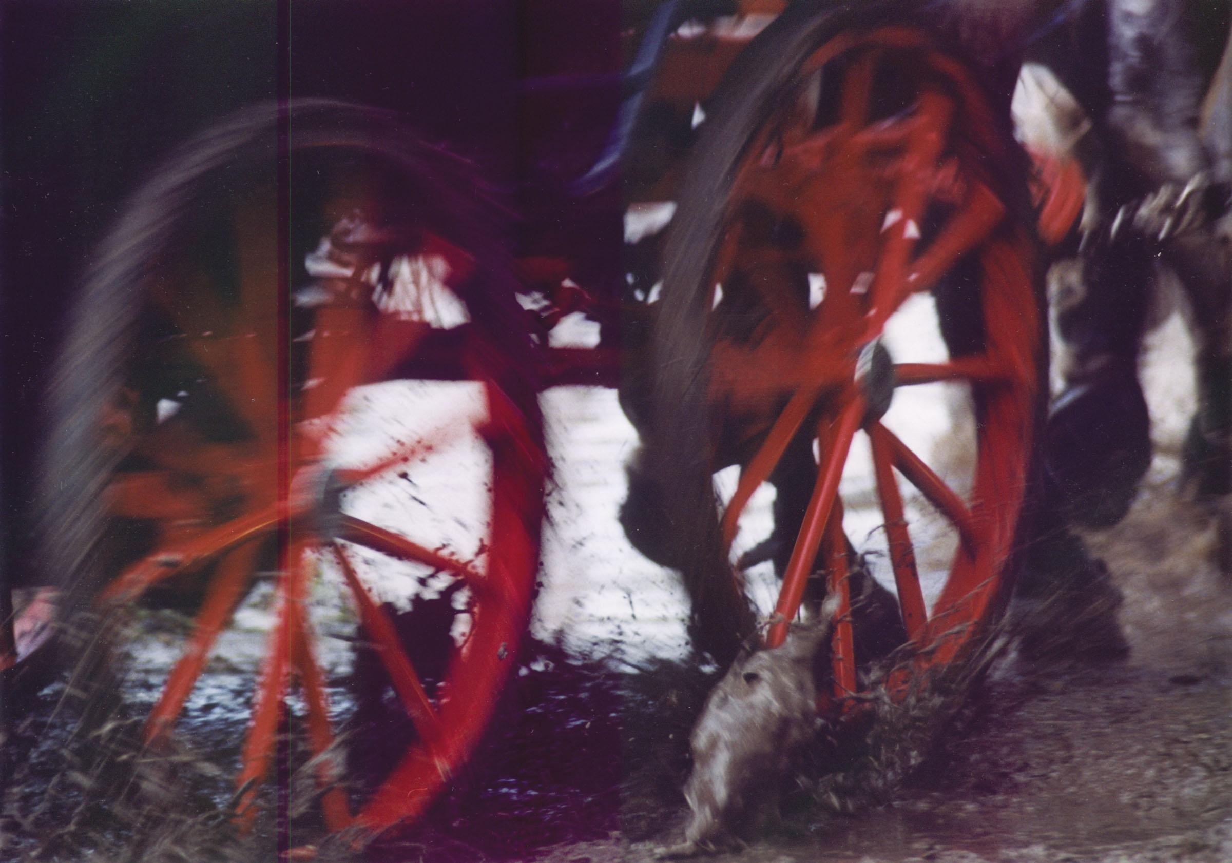 2004.09.18. Hétköznapok fotópályázat - Tóthné Timafalvi Gizella - Vágta.jpg