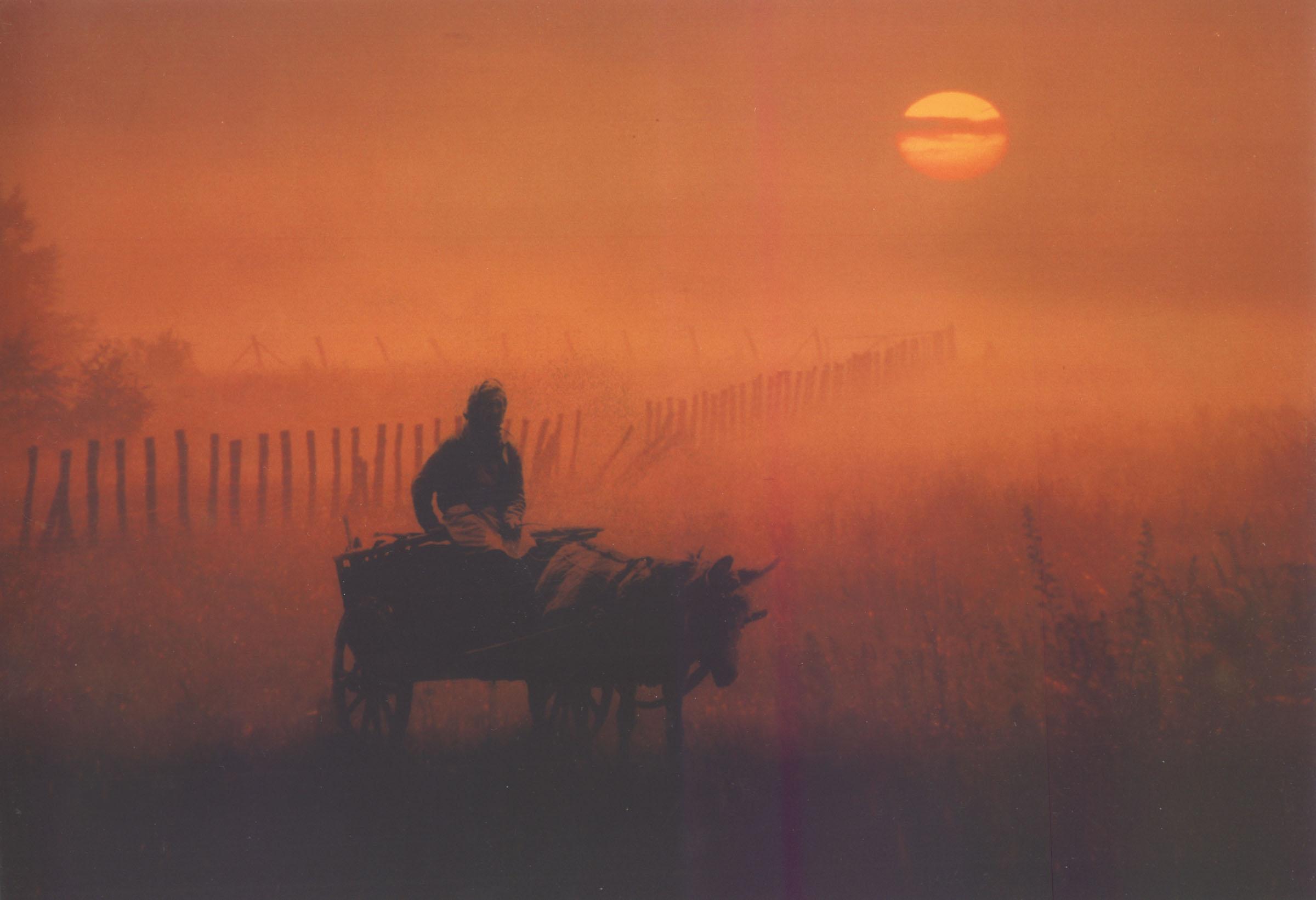2004.09.18. Hétköznapok fotópályázat - Juhász Miklós - Ködös napfelkelte.jpg