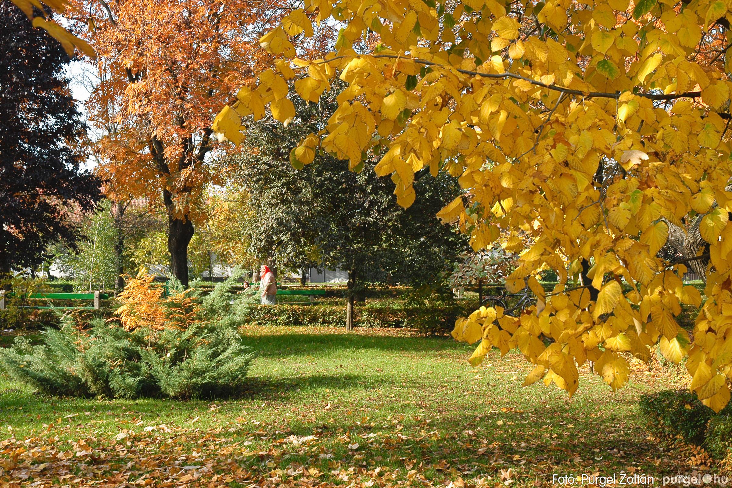 2004.10.26. 002 Az ősz színei Szegváron - Fotó:PURGEL ZOLTÁN© DSC_0013q.jpg