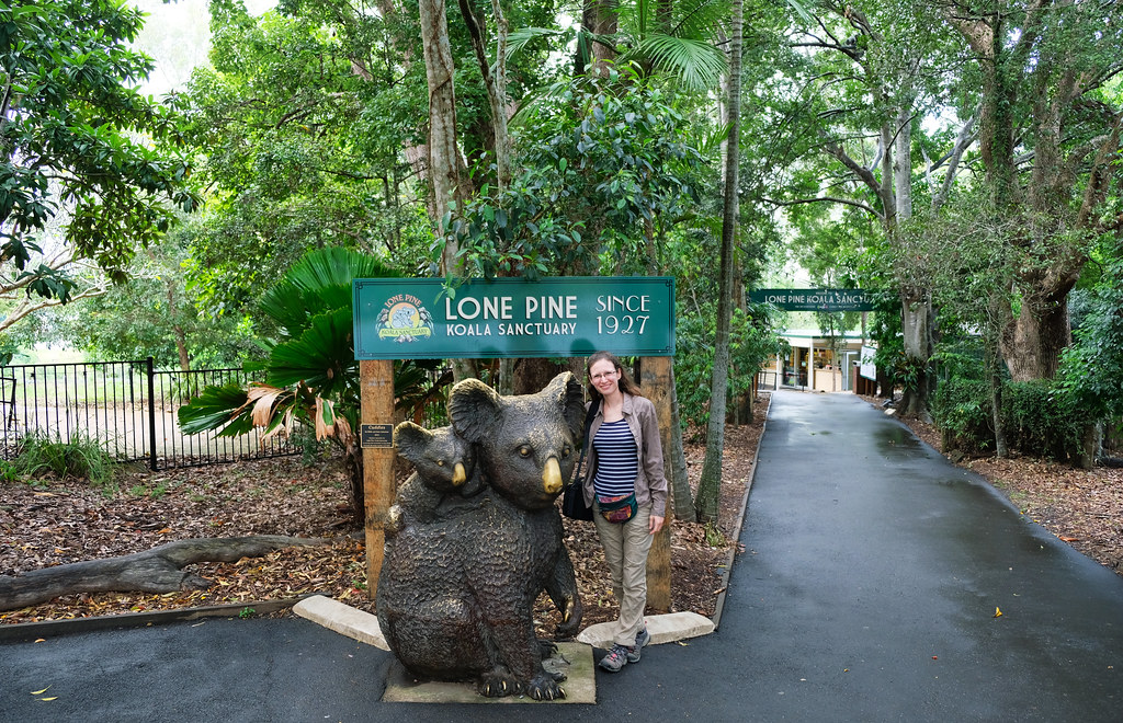 Lone Pine Koala Sanctuary, Queensland, Australia