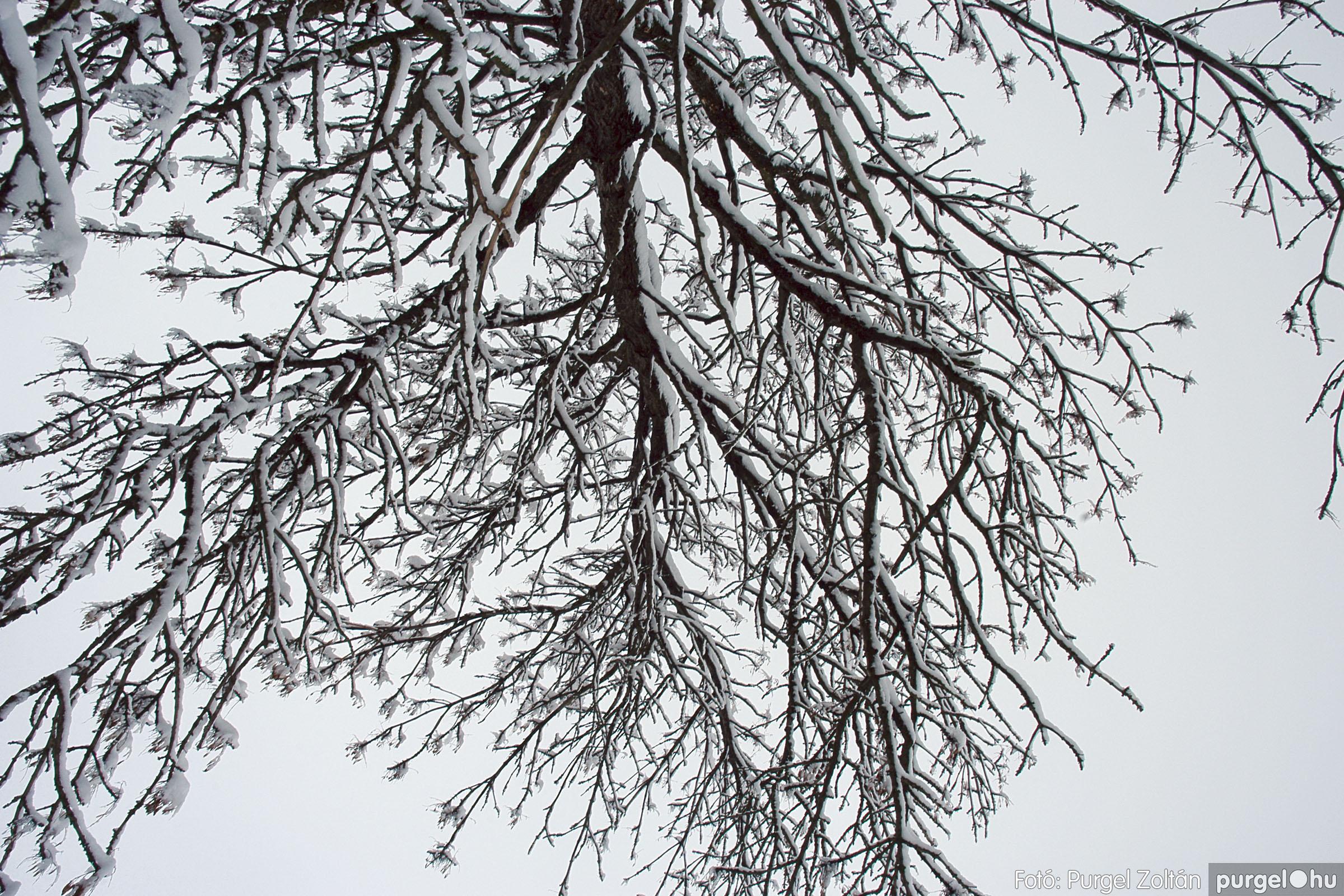 2005.02.16. 058 Hóesés utáni séta Szegváron - Fotó:PURGEL ZOLTÁN© DSC_0189q.jpg