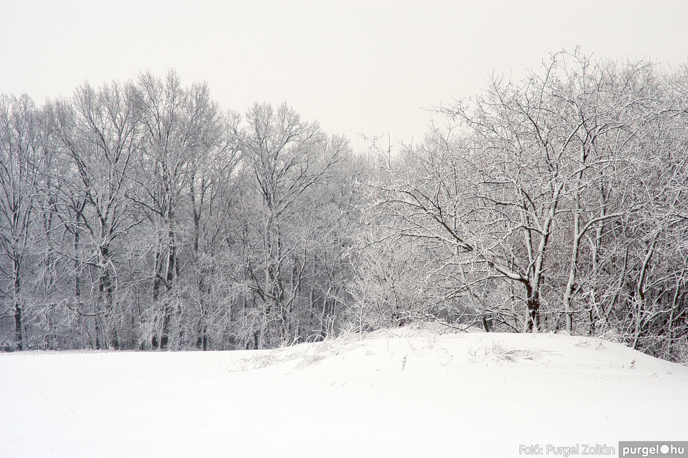 2005.02.16. 055 Hóesés utáni séta Szegváron - Fotó:PURGEL ZOLTÁN© DSC_0186q.jpg