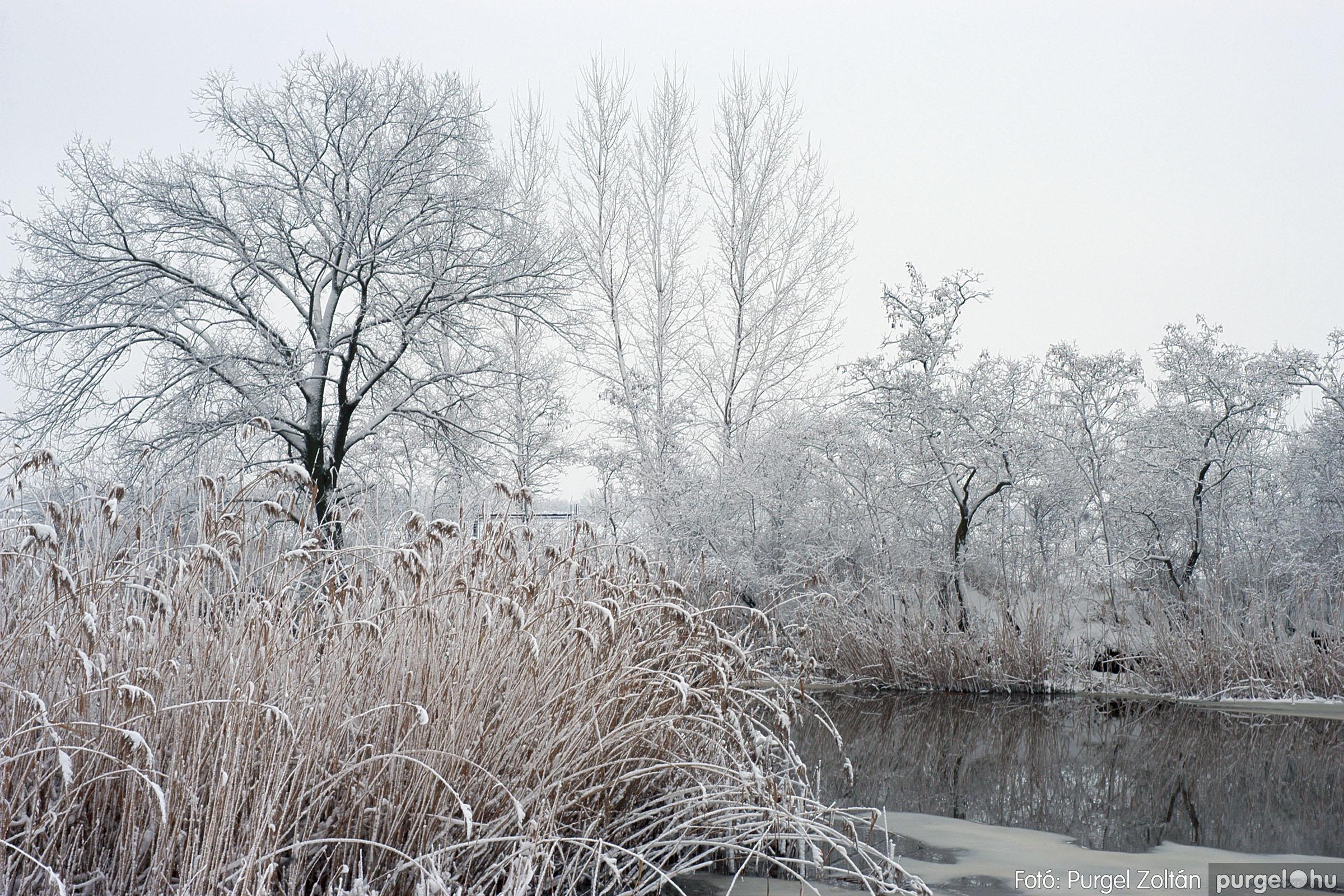 2005.02.16. 053 Hóesés utáni séta Szegváron - Fotó:PURGEL ZOLTÁN© DSC_0184q.jpg