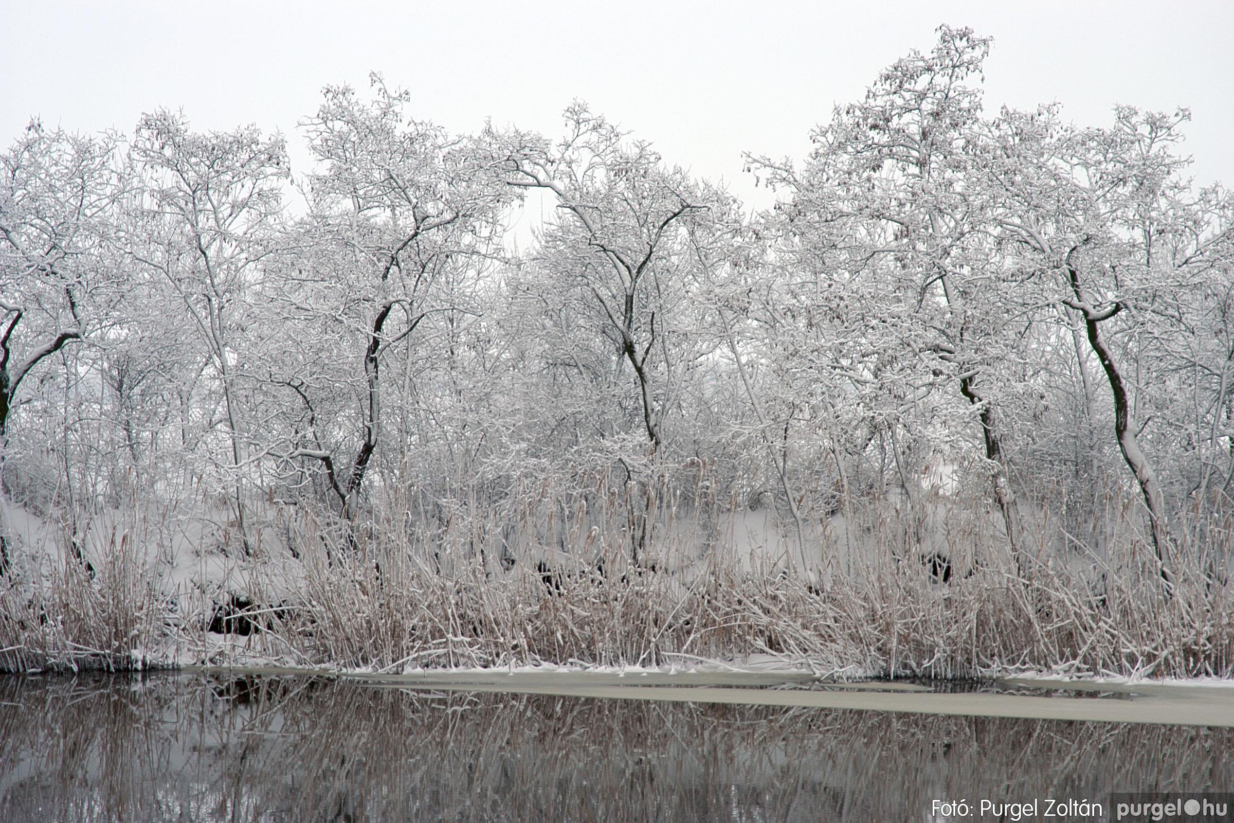 2005.02.16. 052 Hóesés utáni séta Szegváron - Fotó:PURGEL ZOLTÁN© DSC_0183q.jpg