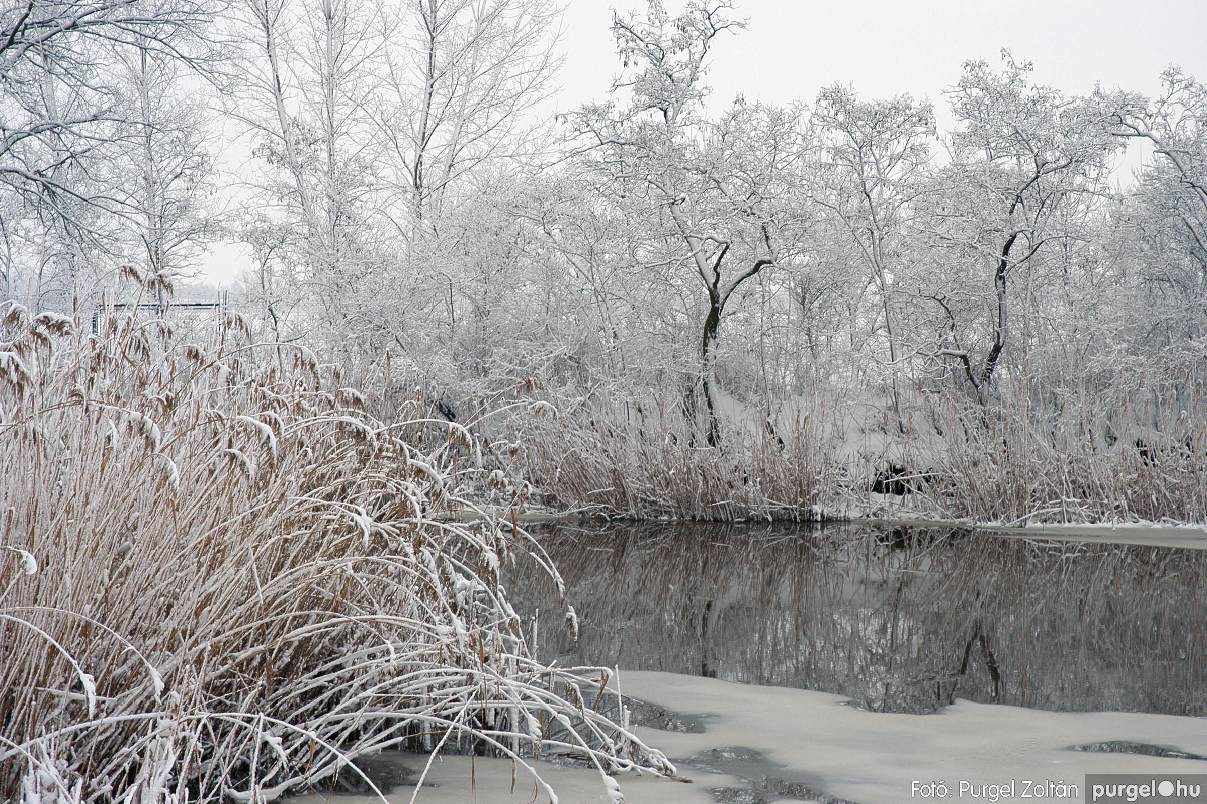 2005.02.16. 051 Hóesés utáni séta Szegváron - Fotó:PURGEL ZOLTÁN© DSC_0182q.jpg
