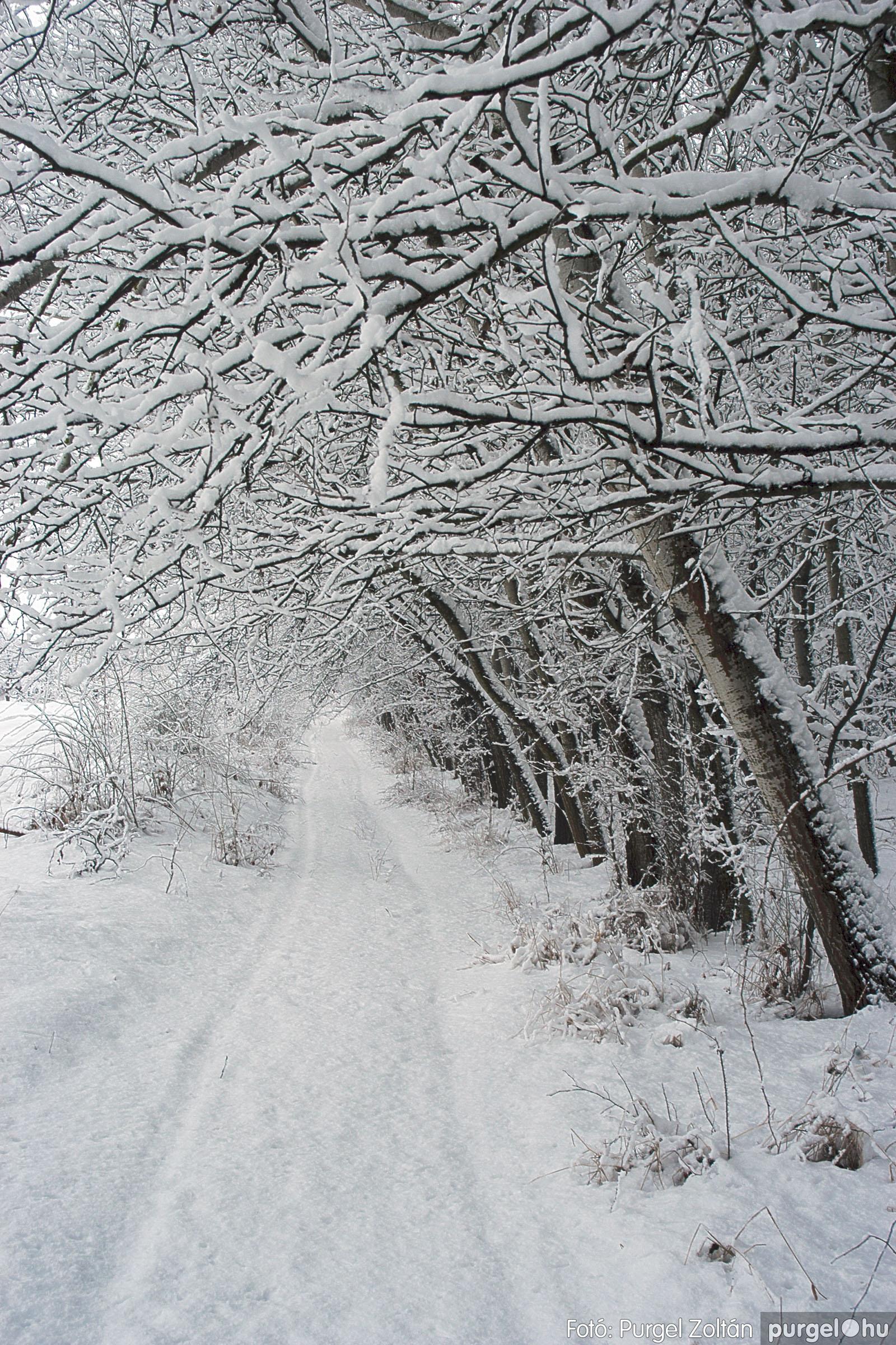 2005.02.16. 045 Hóesés utáni séta Szegváron - Fotó:PURGEL ZOLTÁN© DSC_0176q.jpg