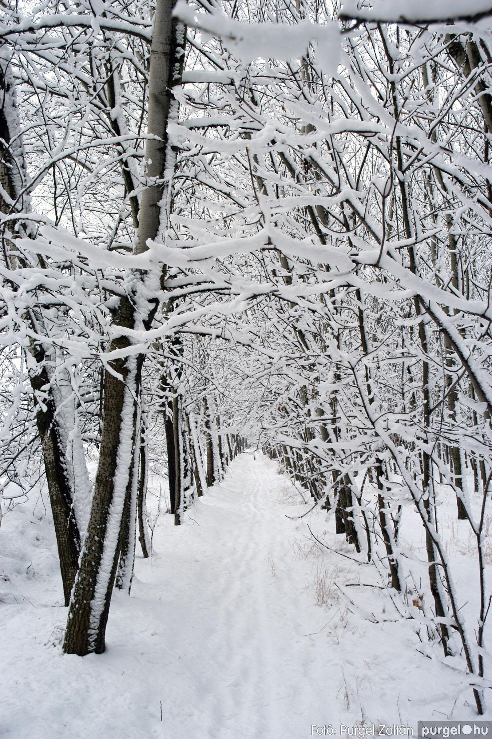 2005.02.16. 044 Hóesés utáni séta Szegváron - Fotó:PURGEL ZOLTÁN© DSC_0175q.jpg
