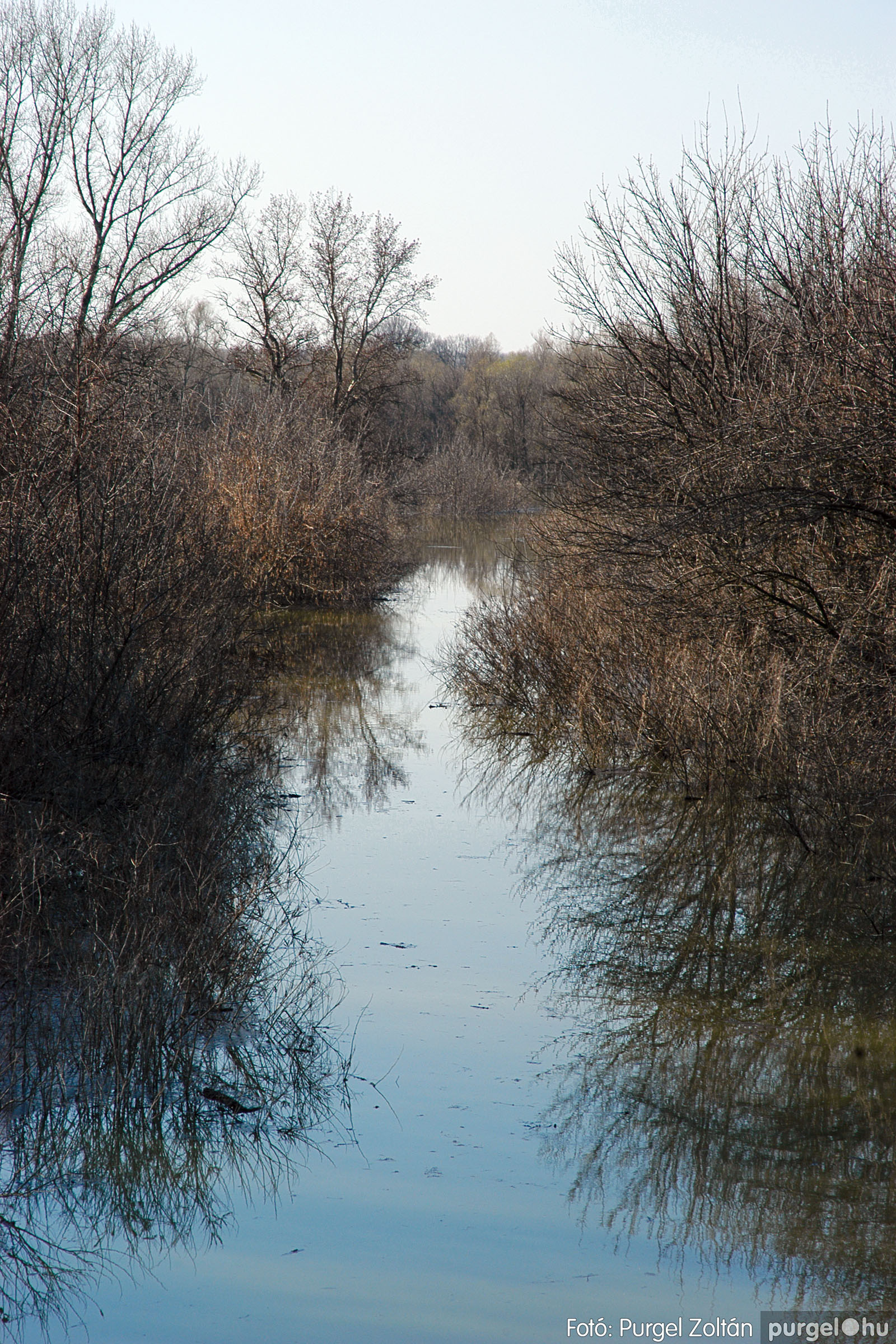 2005.04.02. 009 Tisza áradás - Fotó:PURGEL ZOLTÁN© DSC_0022q.jpg