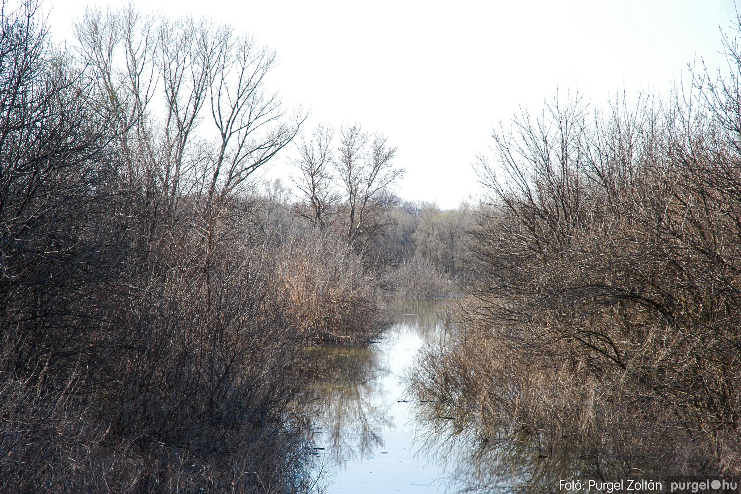 2005.04.02. 008 Tisza áradás - Fotó:PURGEL ZOLTÁN© DSC_0021q.jpg
