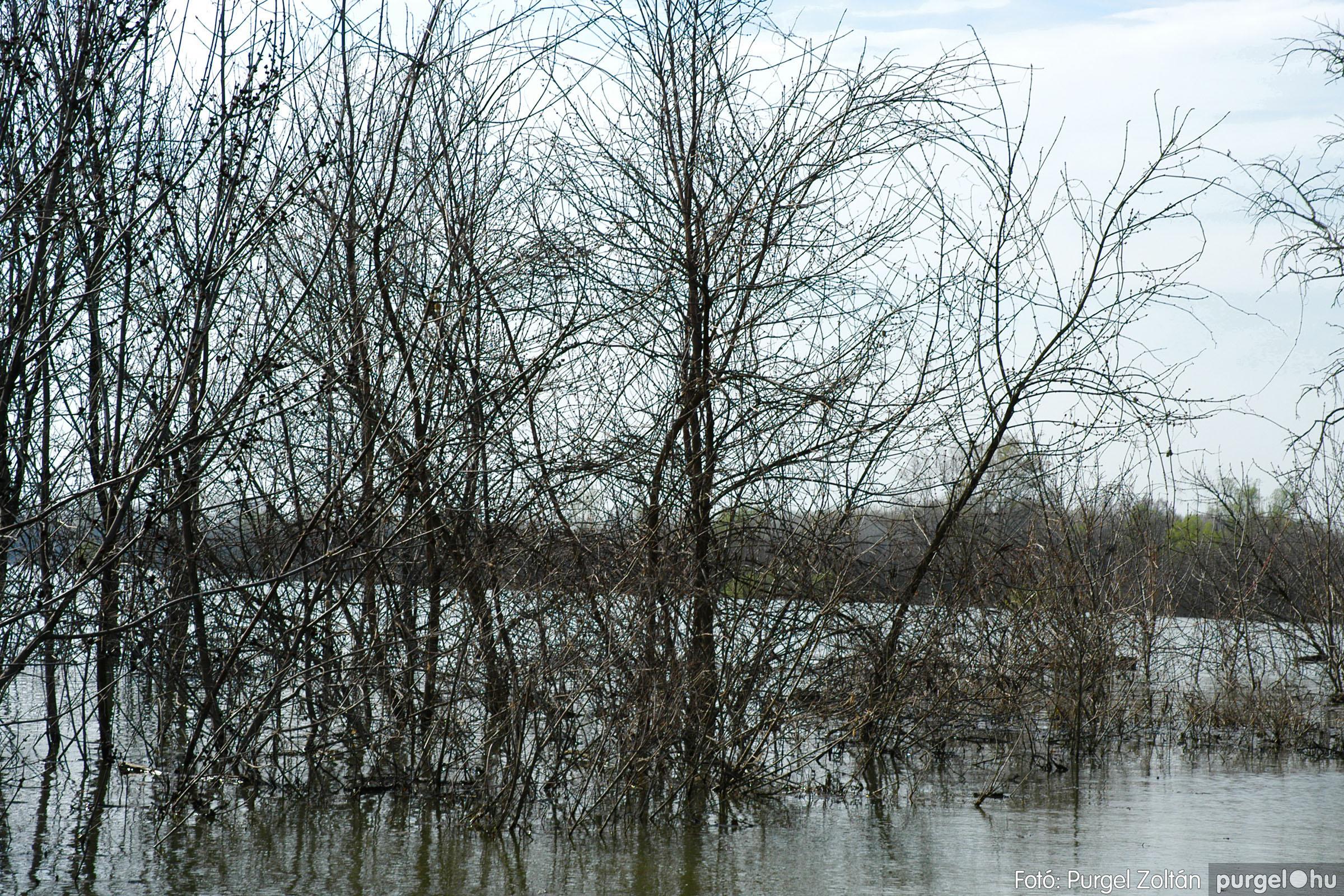 2005.04.08. 007 Csónakázás a Tisza árterében - Fotó:PURGEL ZOLTÁN© DSC_0038q.jpg