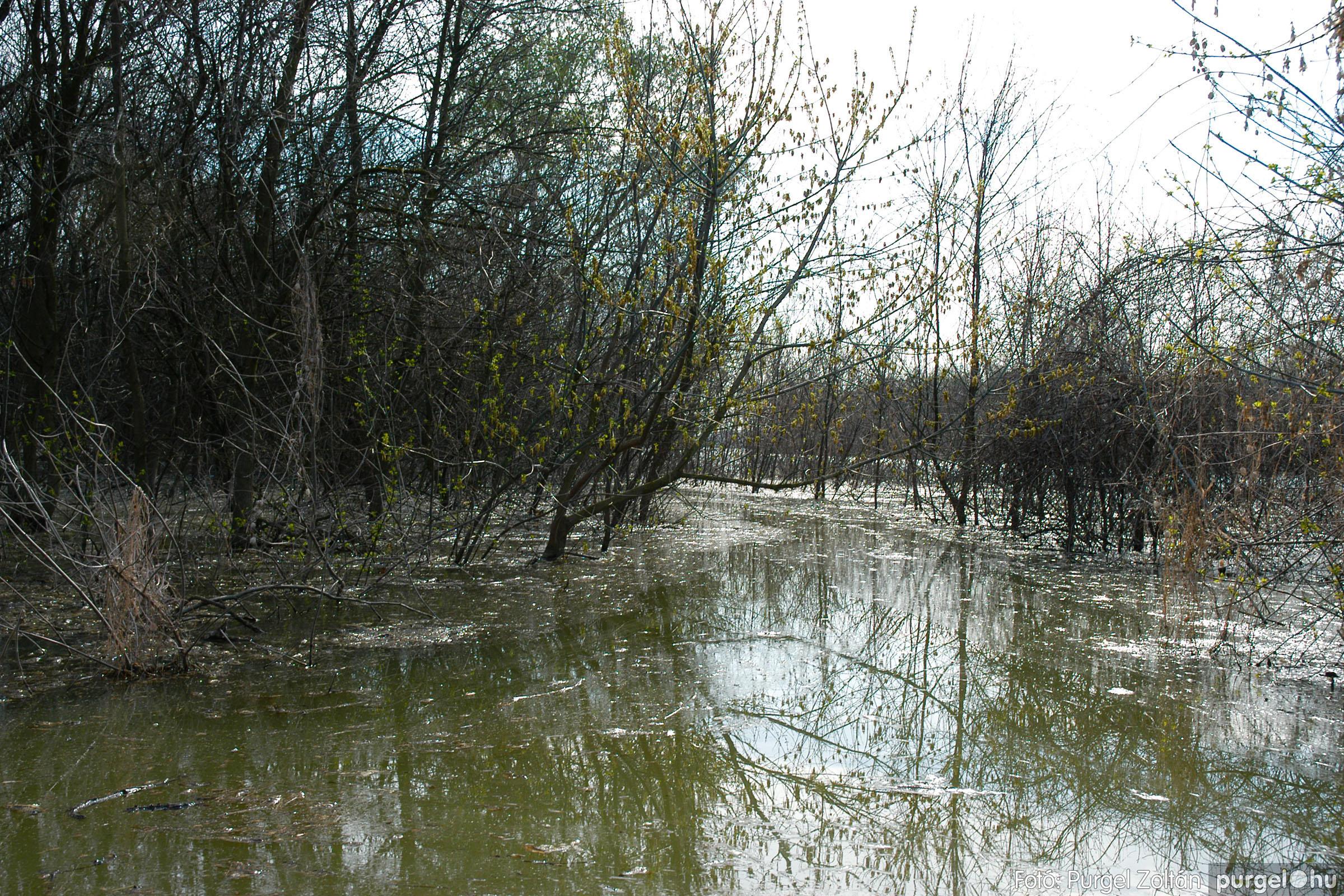2005.04.08. 024 Csónakázás a Tisza árterében - Fotó:PURGEL ZOLTÁN© DSC_0060q.jpg