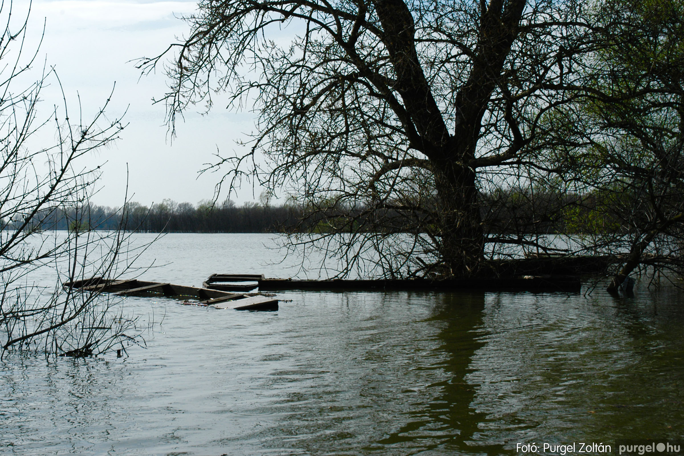 2005.04.08. 014 Csónakázás a Tisza árterében - Fotó:PURGEL ZOLTÁN© DSC_0046q.jpg