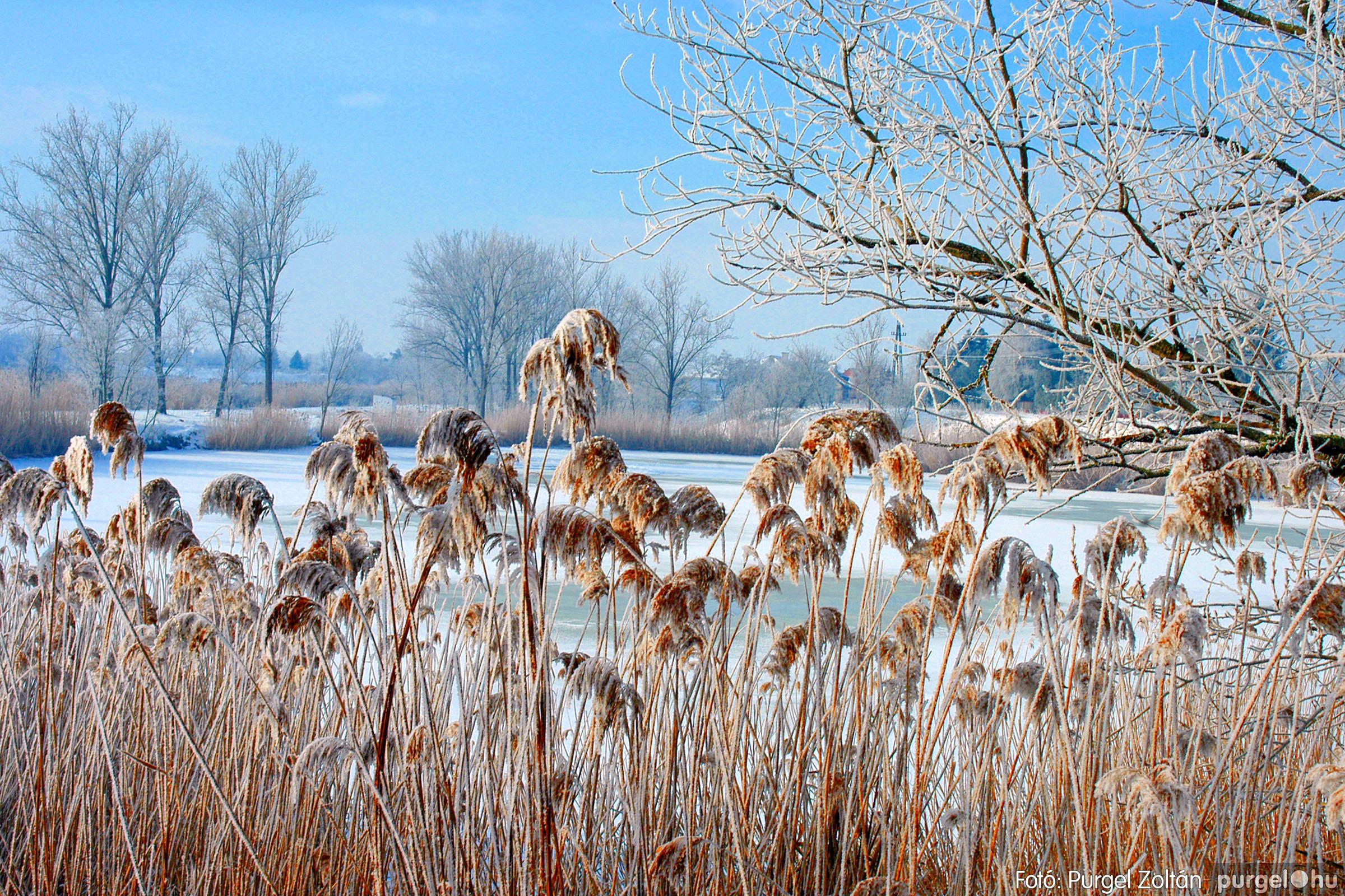 2005.02.02. 007 Havas Szegvár - Fotó:PURGEL ZOLTÁN© DSC_00132q.jpg
