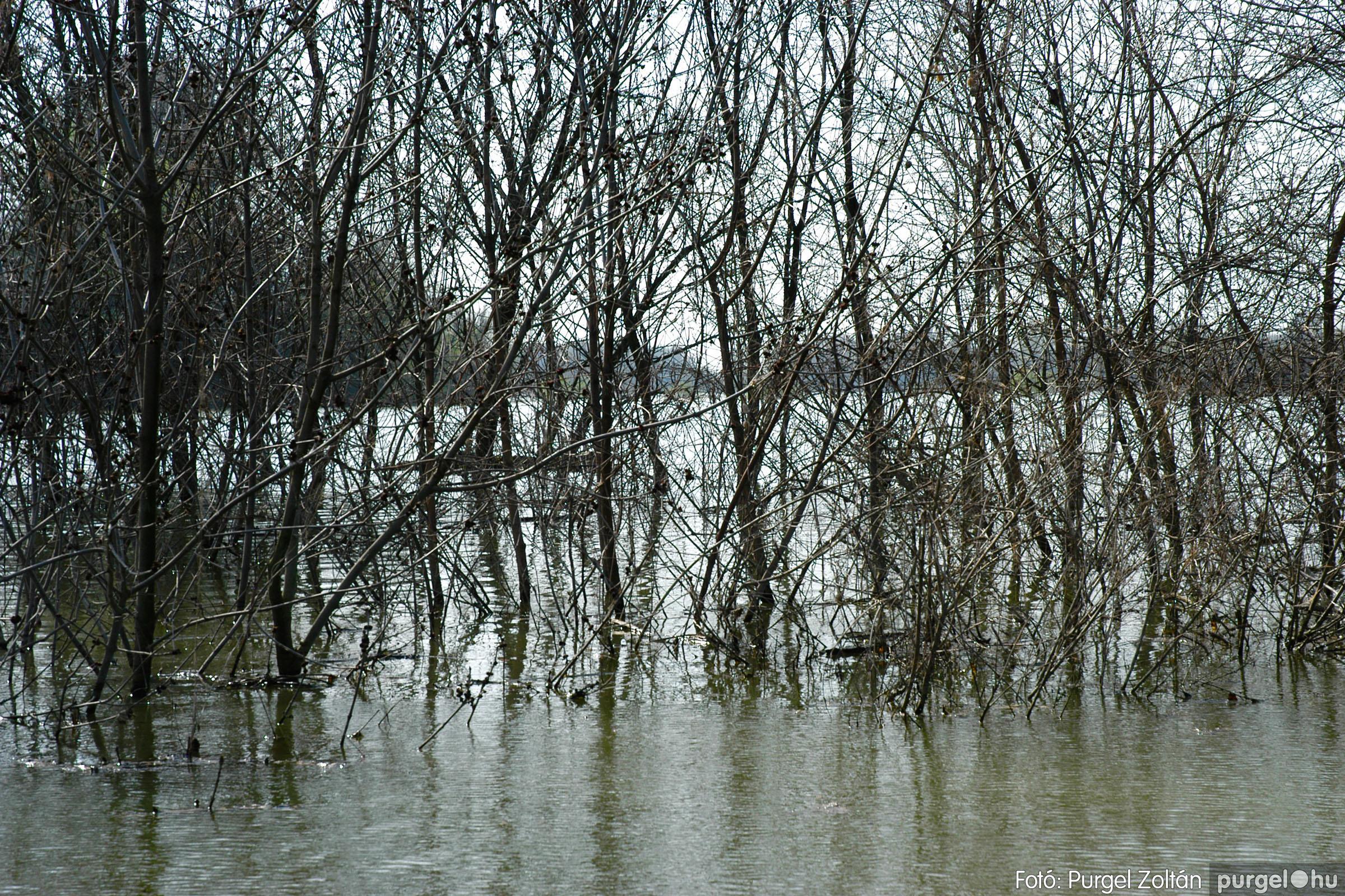 2005.04.08. 008 Csónakázás a Tisza árterében - Fotó:PURGEL ZOLTÁN© DSC_0039q.jpg