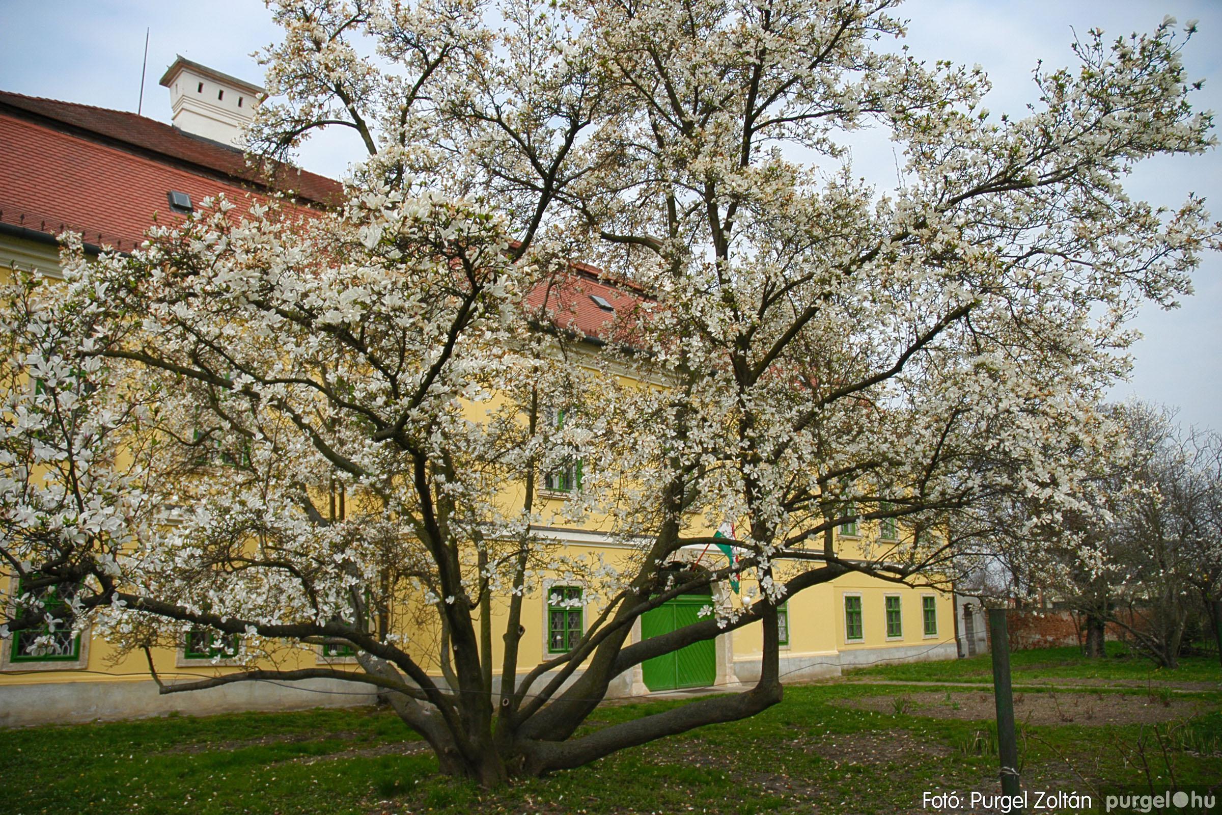 2005.04.13. 008 Szegvári épületek - Fotó:PURGEL ZOLTÁN© DSC_0011q.jpg