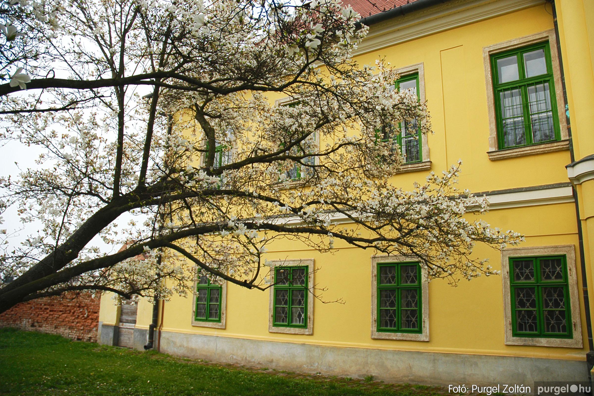2005.04.13. 004 Szegvári épületek - Fotó:PURGEL ZOLTÁN© DSC_0007q.jpg