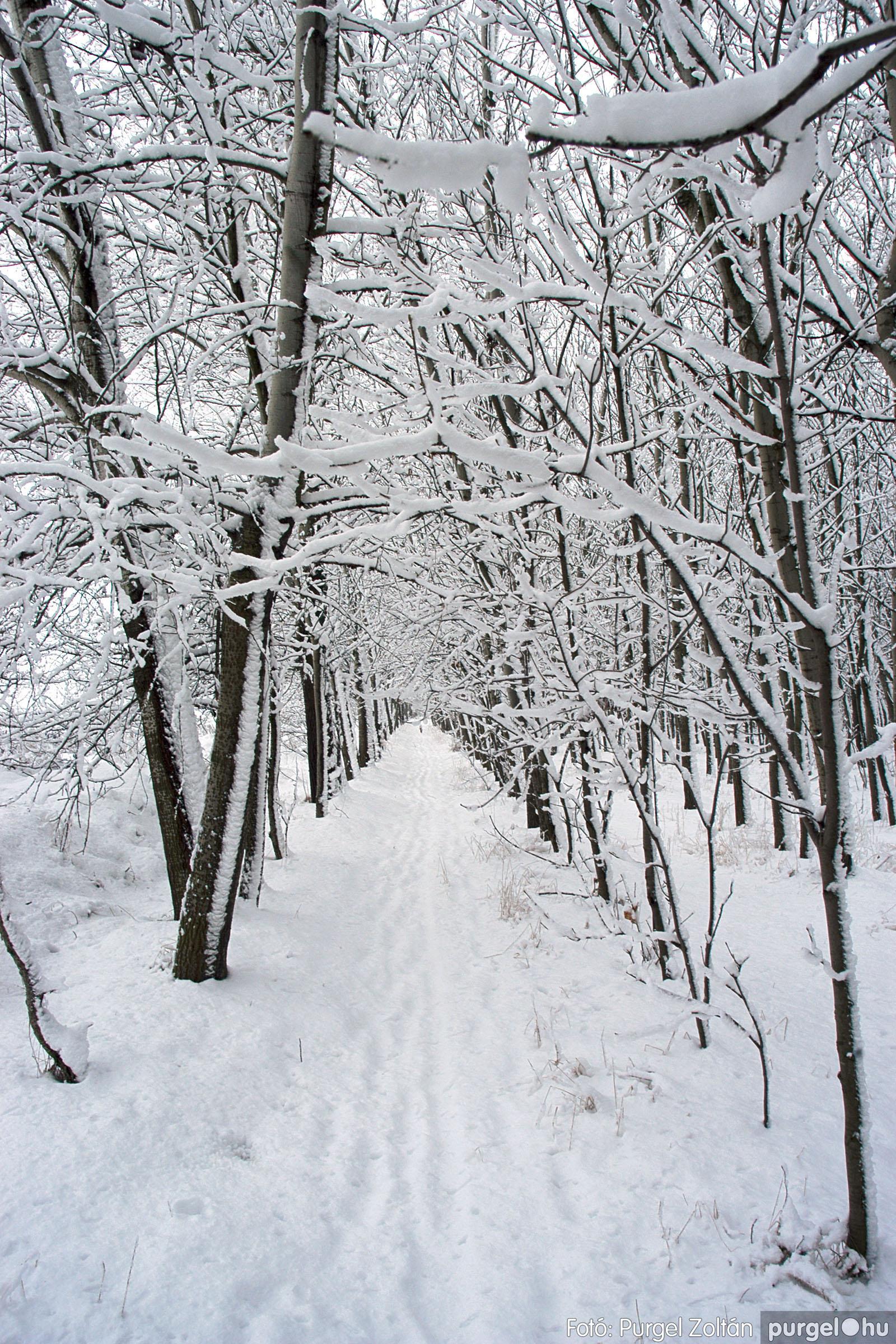 2005.02.16. 043 Hóesés utáni séta Szegváron - Fotó:PURGEL ZOLTÁN© DSC_0174q.jpg