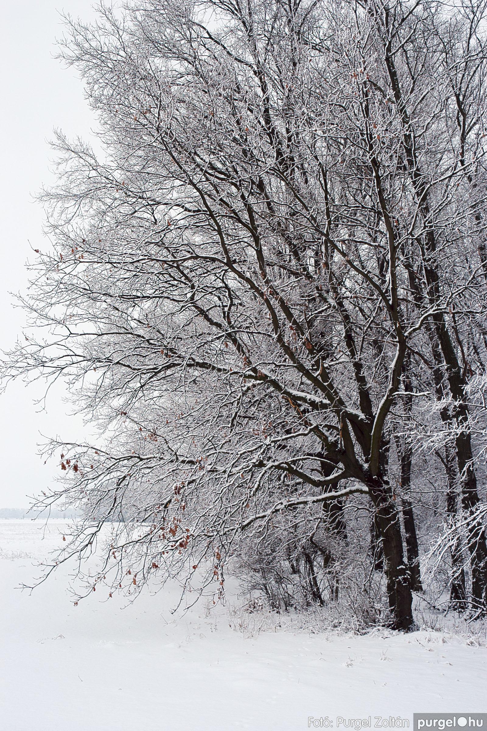 2005.02.16. 057 Hóesés utáni séta Szegváron - Fotó:PURGEL ZOLTÁN© DSC_0188q.jpg