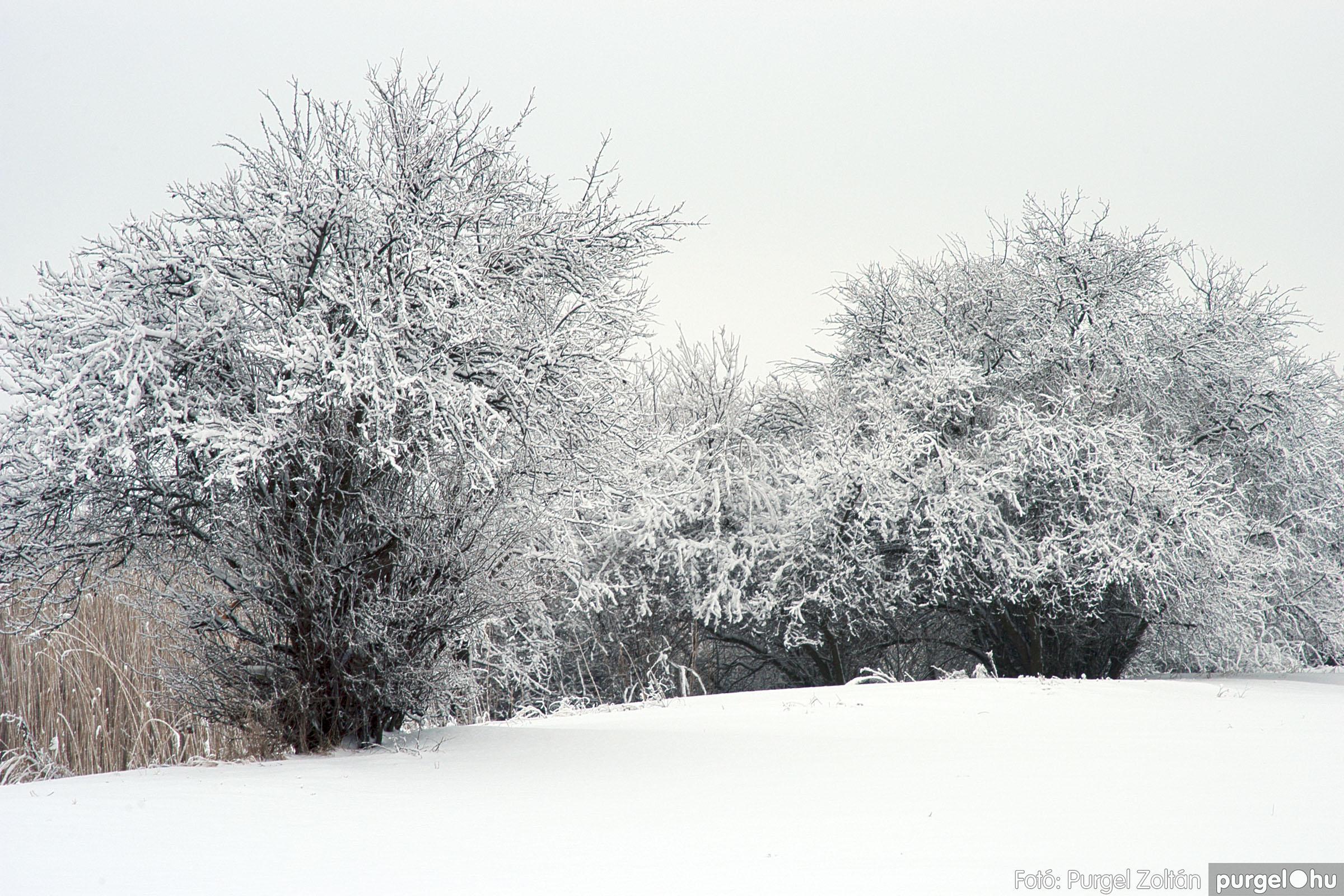 2005.02.16. 050 Hóesés utáni séta Szegváron - Fotó:PURGEL ZOLTÁN© DSC_0181q.jpg