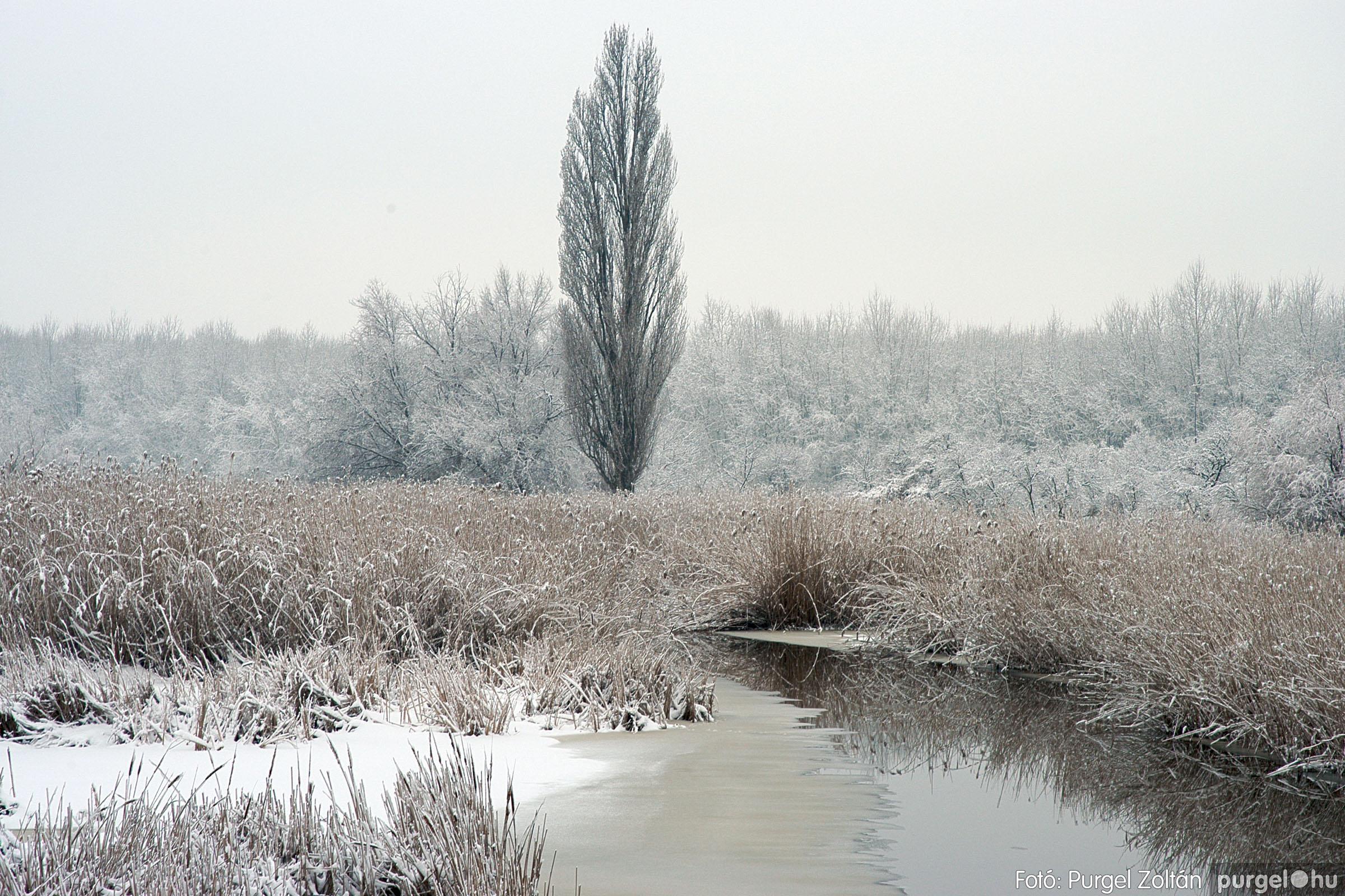 2005.02.16. 034 Hóesés utáni séta Szegváron - Fotó:PURGEL ZOLTÁN© DSC_0162q.jpg