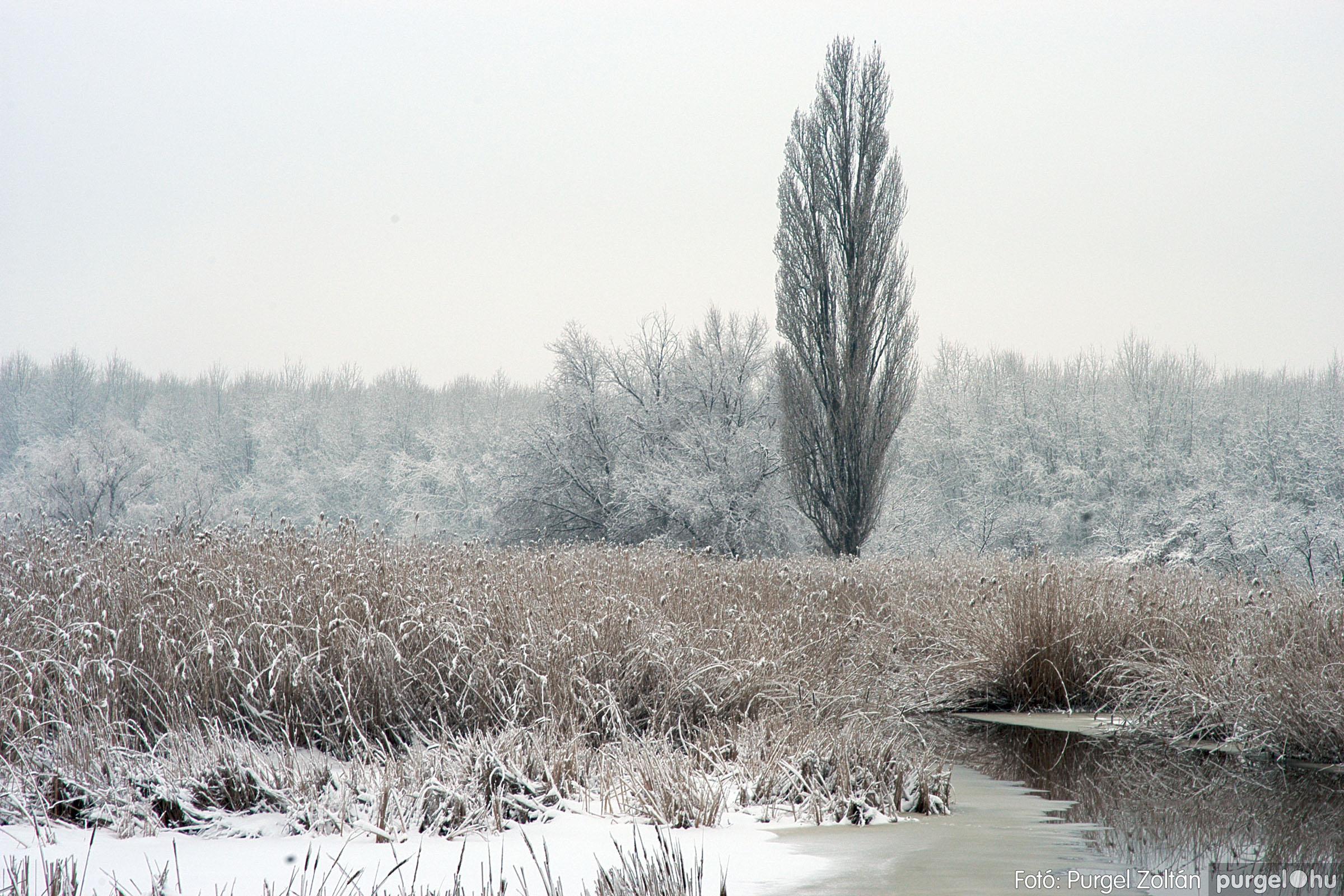2005.02.16. 033 Hóesés utáni séta Szegváron - Fotó:PURGEL ZOLTÁN© DSC_0160q.jpg