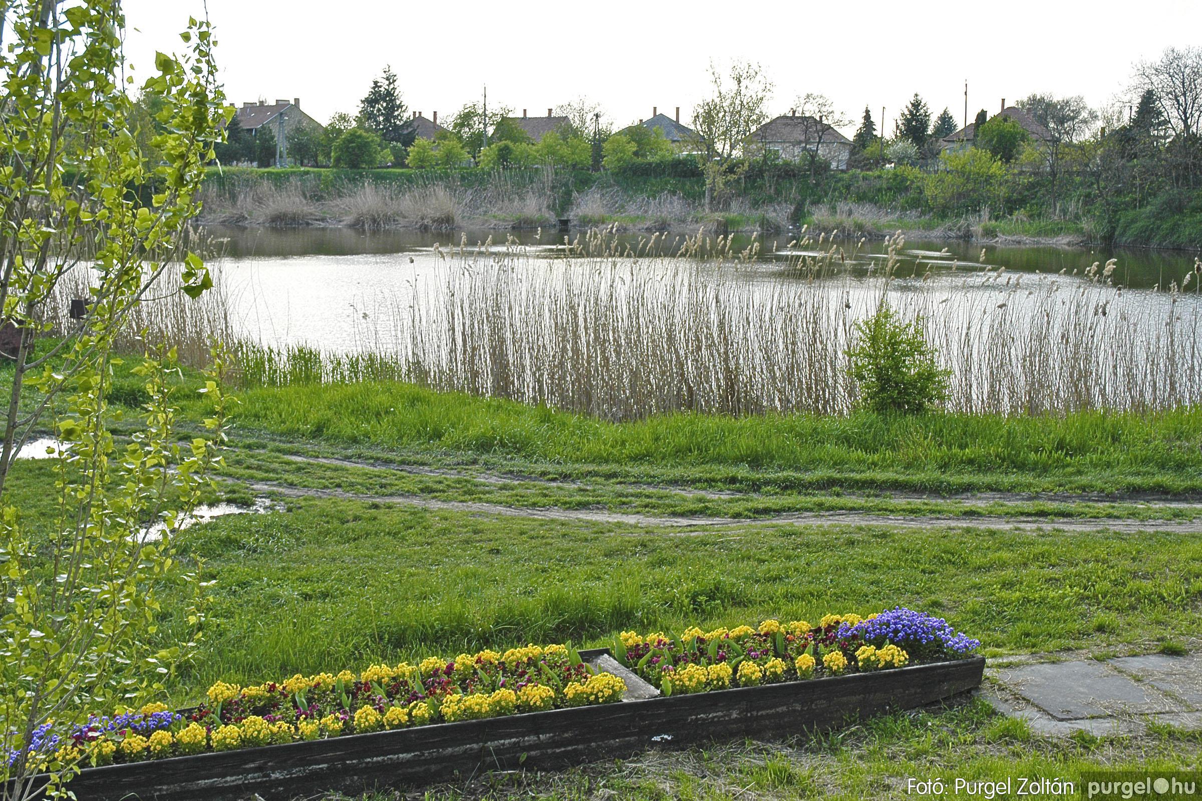2005.04.28. 053 Tavaszi körkép: szélmalom, kastély, piactér, Kórógy-tó - Fotó:PURGEL ZOLTÁN© DSC_0103q.jpg