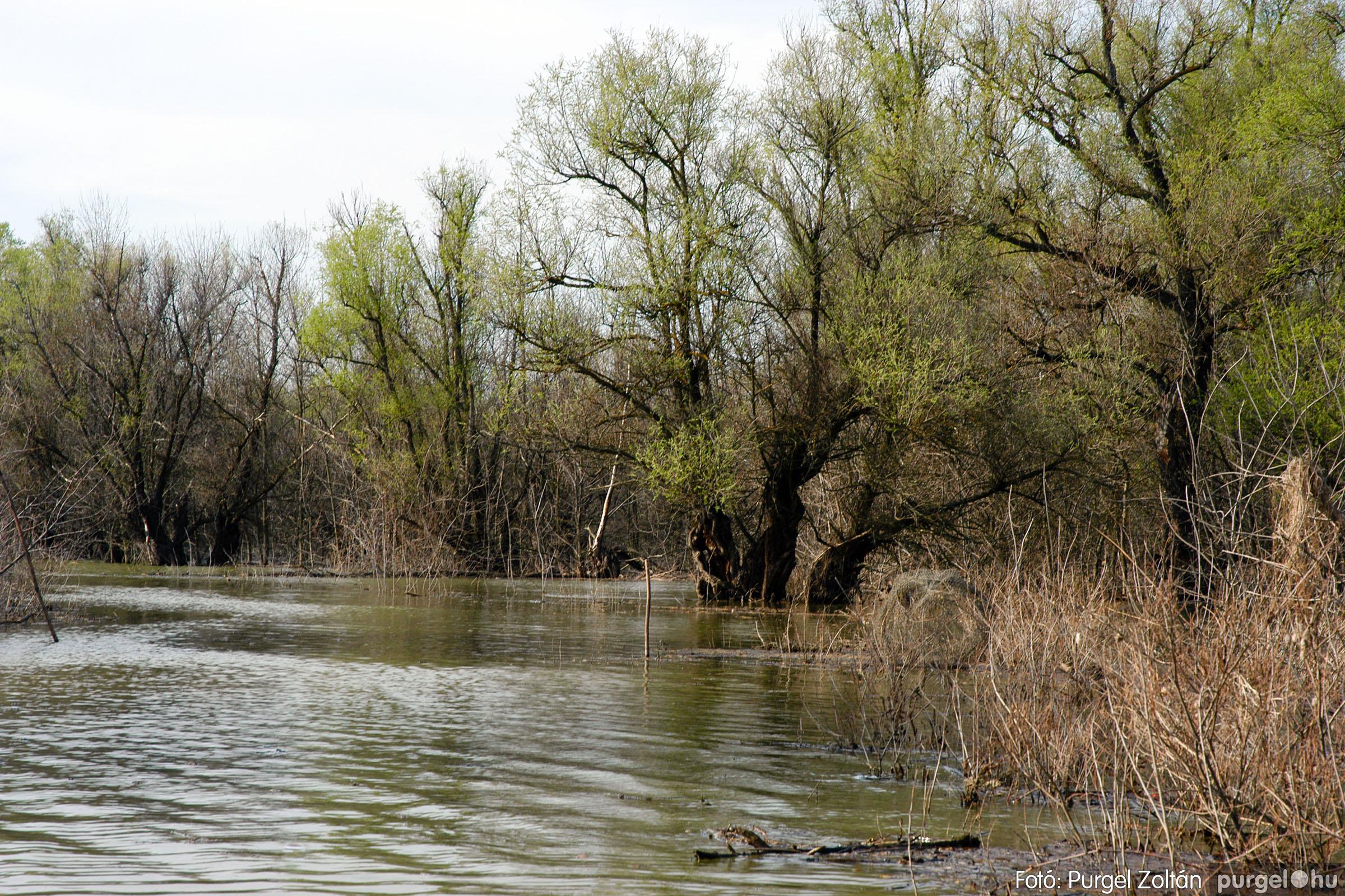 2005.04.08. 017 Csónakázás a Tisza árterében - Fotó:PURGEL ZOLTÁN© DSC_0050q.jpg