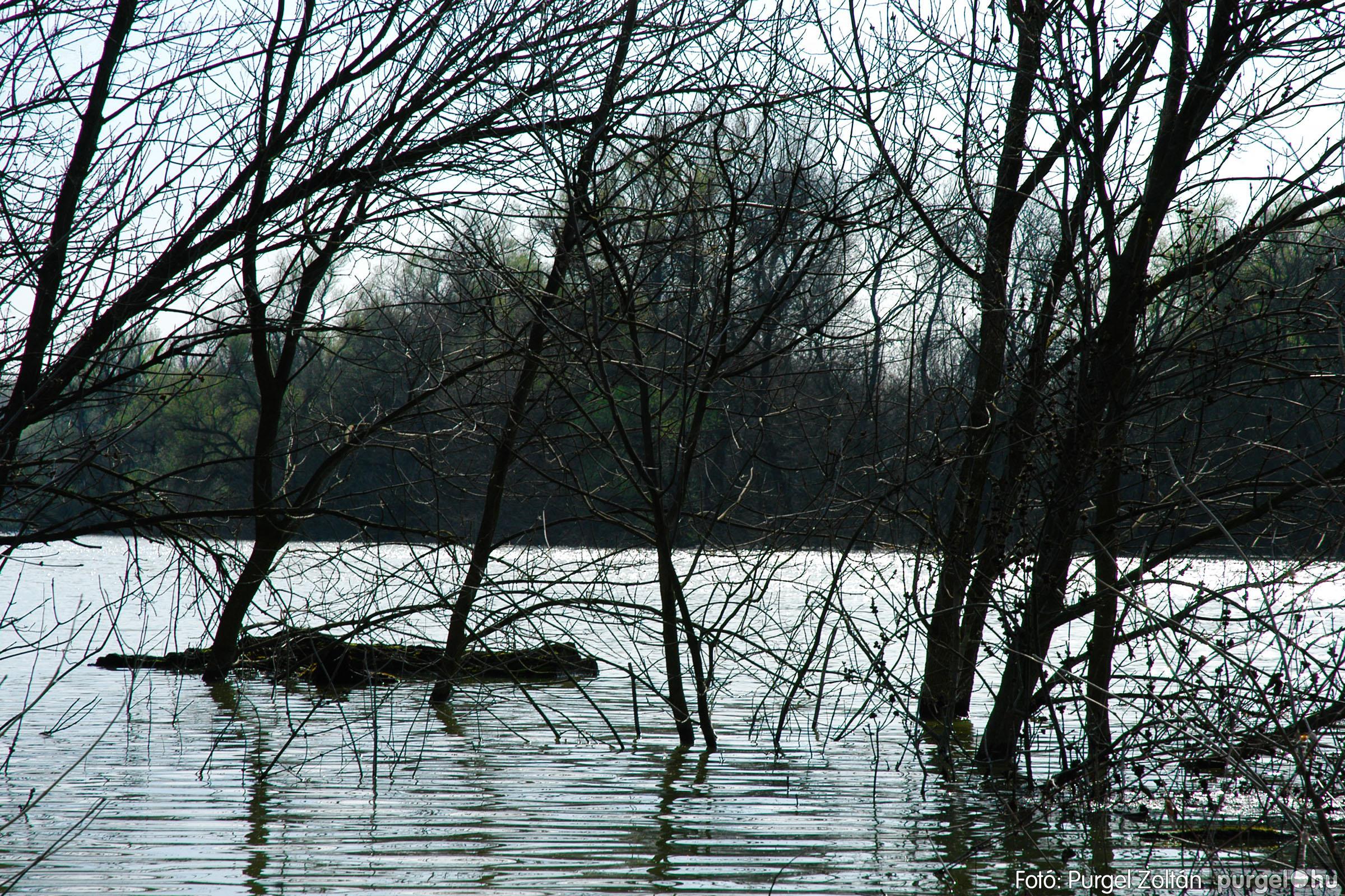 2005.04.08. 012 Csónakázás a Tisza árterében - Fotó:PURGEL ZOLTÁN© DSC_0044q.jpg