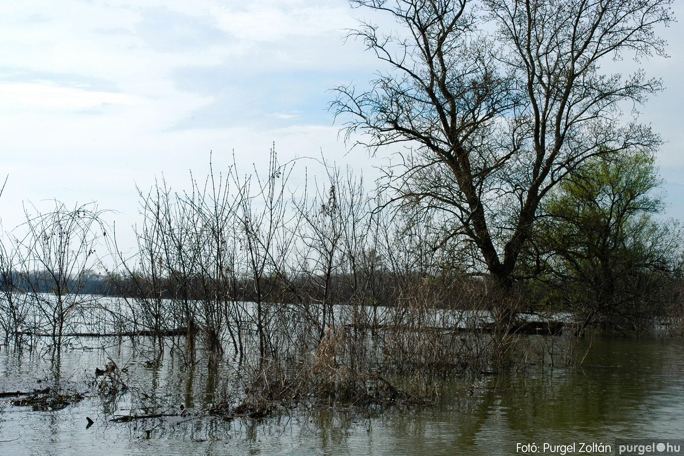 2005.04.08. 010 Csónakázás a Tisza árterében - Fotó:PURGEL ZOLTÁN© DSC_0042q.jpg