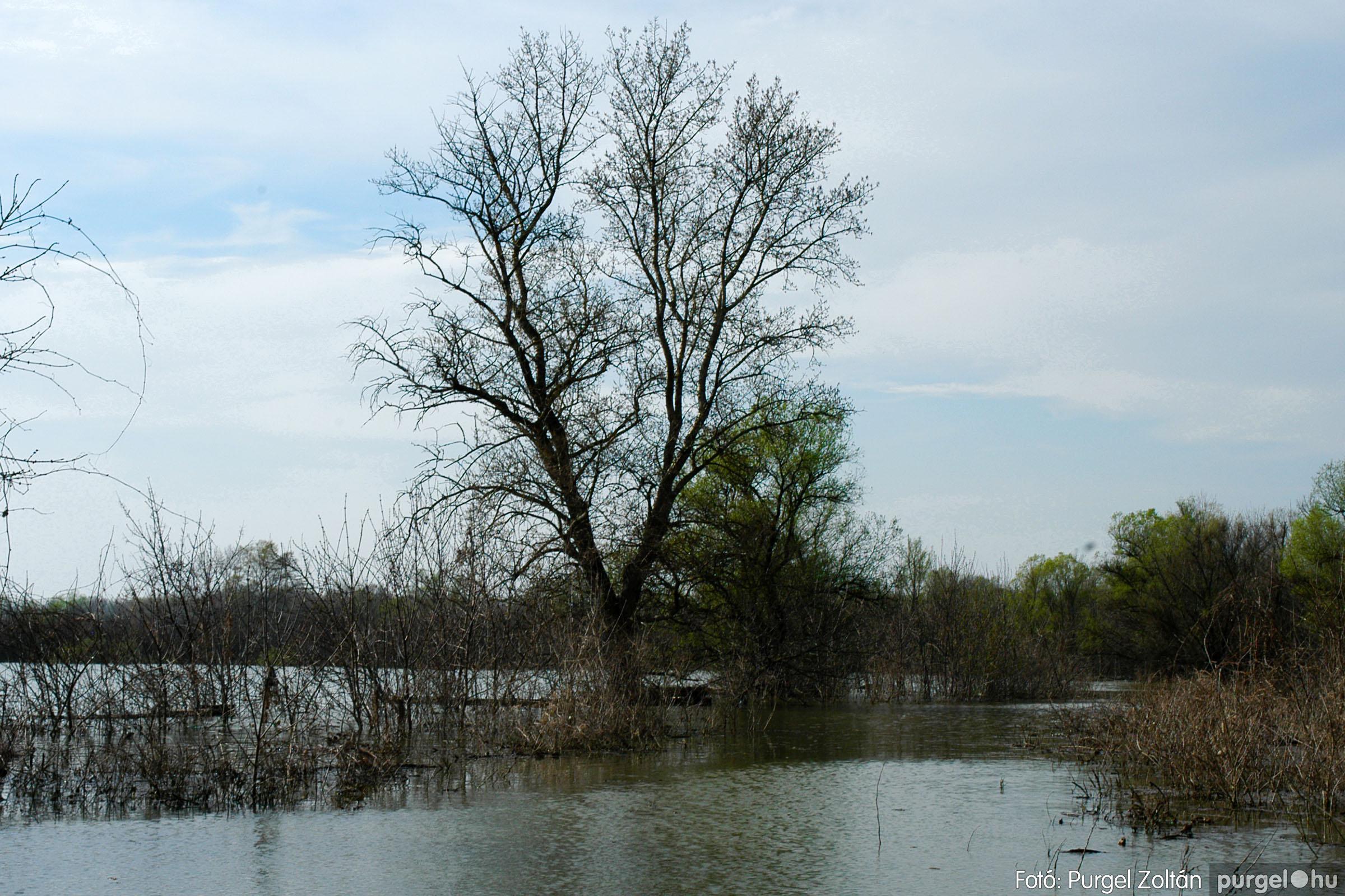 2005.04.08. 009 Csónakázás a Tisza árterében - Fotó:PURGEL ZOLTÁN© DSC_0041q.jpg