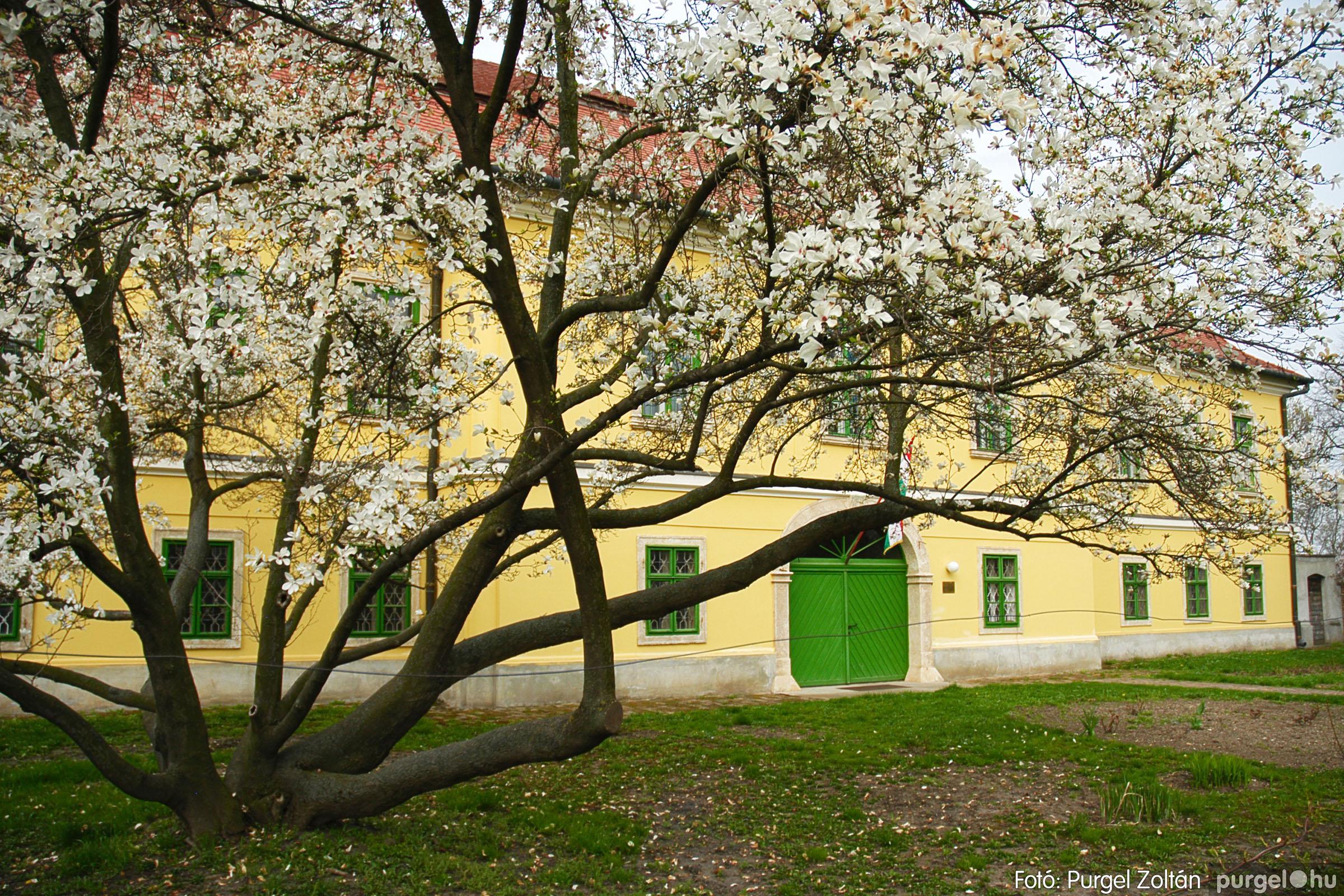 2005.04.13. 007 Szegvári épületek - Fotó:PURGEL ZOLTÁN© DSC_0010q.jpg