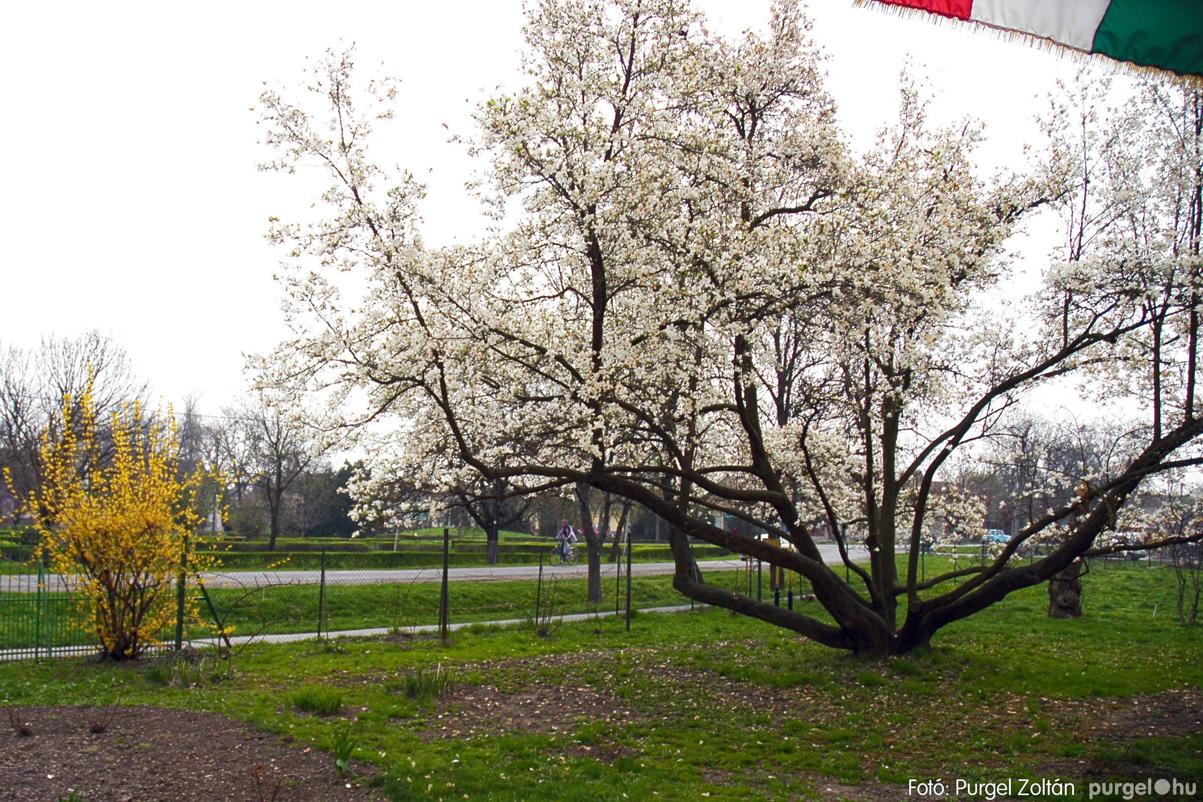 2005.04.13. 005 Szegvári épületek - Fotó:PURGEL ZOLTÁN© DSC_0008q.jpg