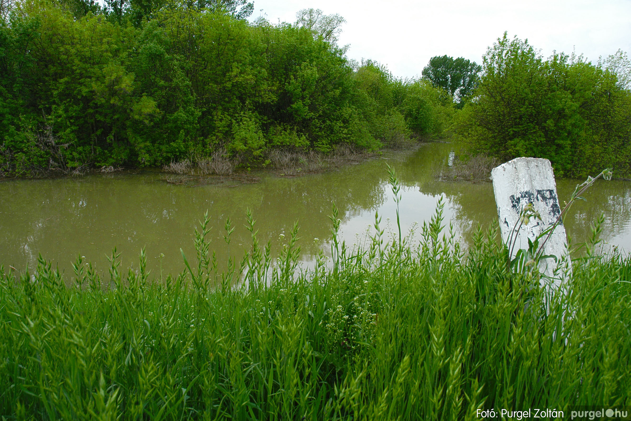 2005.05.05. 004 Tisza áradás - Fotó:PURGEL ZOLTÁN© DSC_0009q.jpg