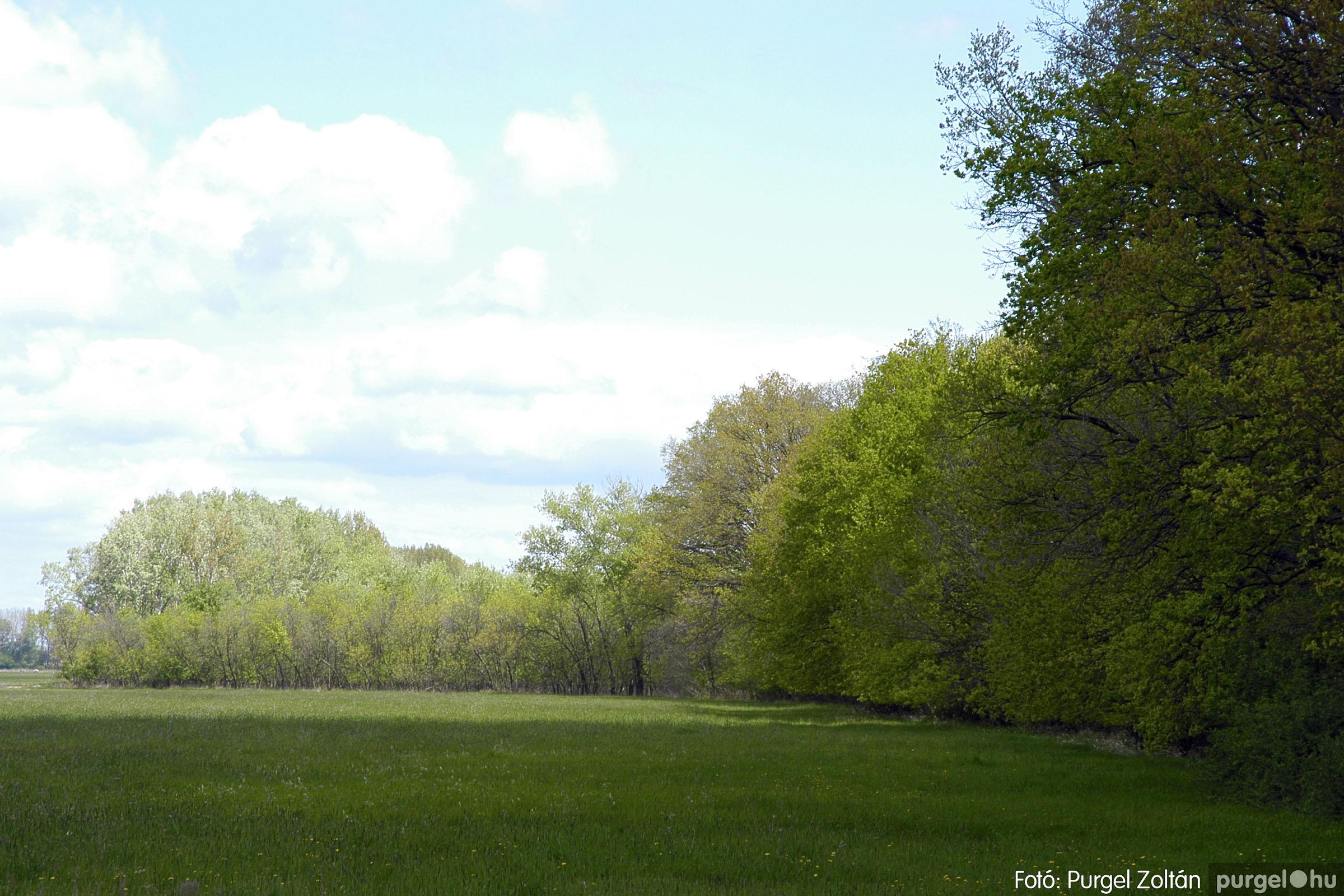 2005.04.29. 038 Tavaszi körkép - Fotó:PURGEL ZOLTÁN©.jpg
