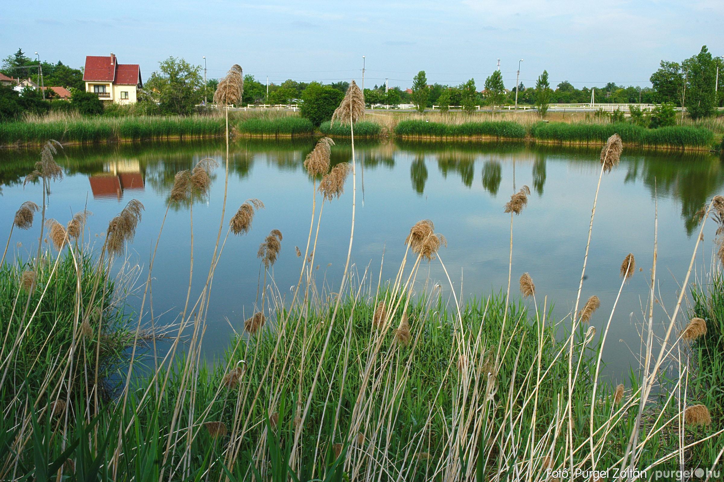 2005.05.30. 017 Tavaszi körkép: babaház, játszótér, Kórógy-tó - Fotó:PURGEL ZOLTÁN© DSC_0295q.jpg