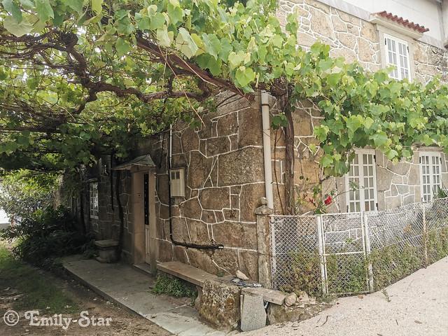 Camino Portugues - Tag 13-144207