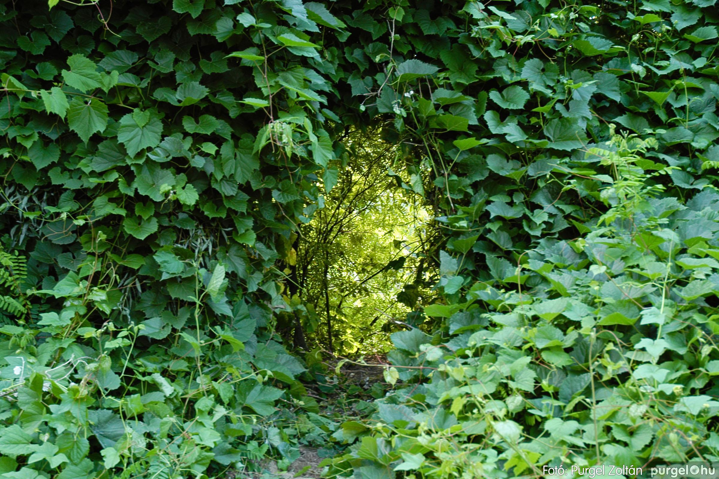 2005.07.16. 010 Szegvár vizei: Holt-Tisza, Tisza, Kurca - Fotó:PURGEL ZOLTÁN© DSC_0022q.jpg