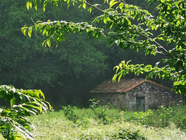 Camino Portugues - Tag 13-092440