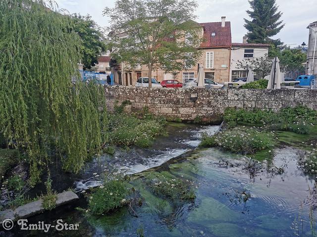 Camino Portugues - Tag 13-083428