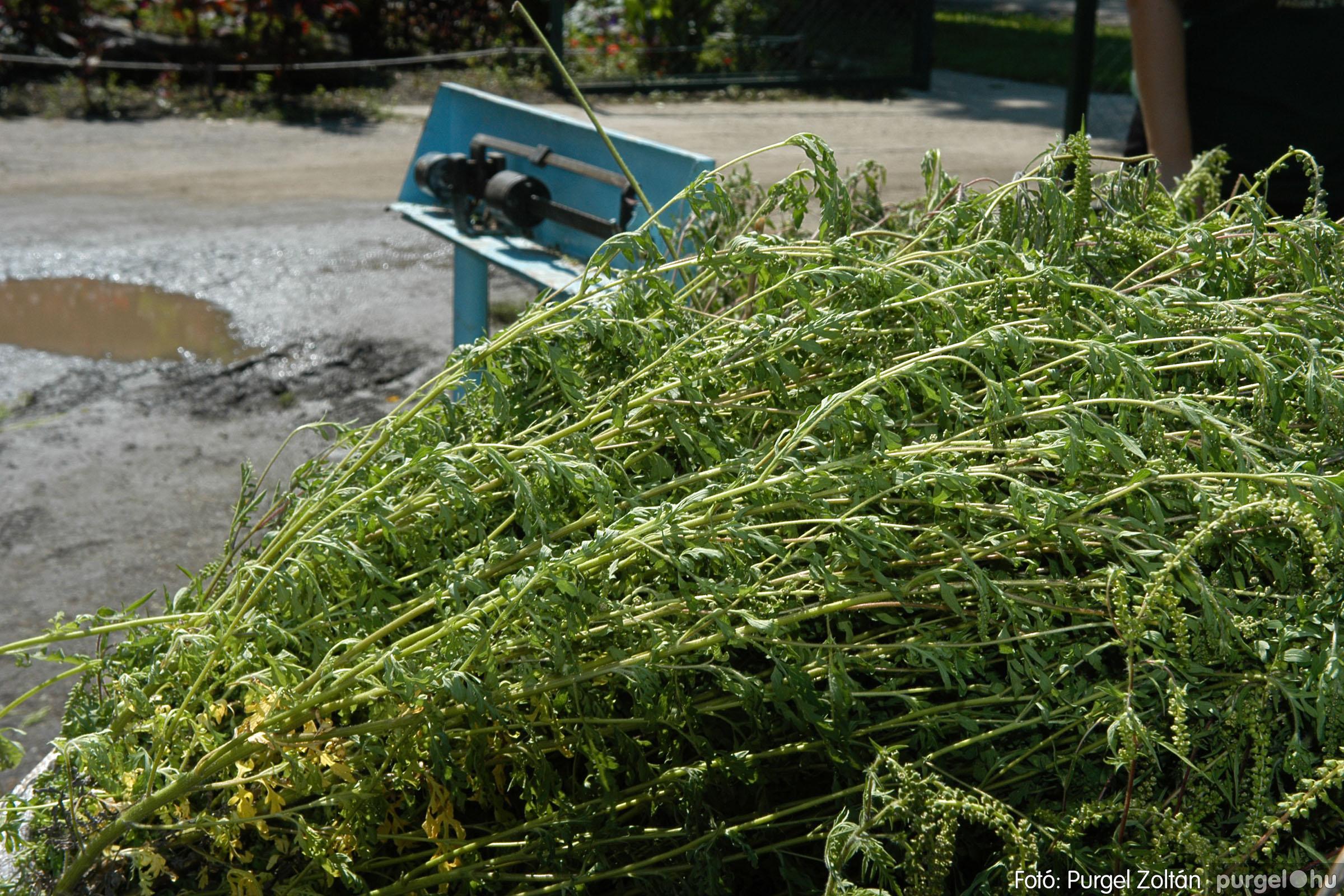 2005.08.20. 158 Szegvári falunapok 2005. - 2. nap - Fotó:PURGEL ZOLTÁN© DSC_0180q.jpg