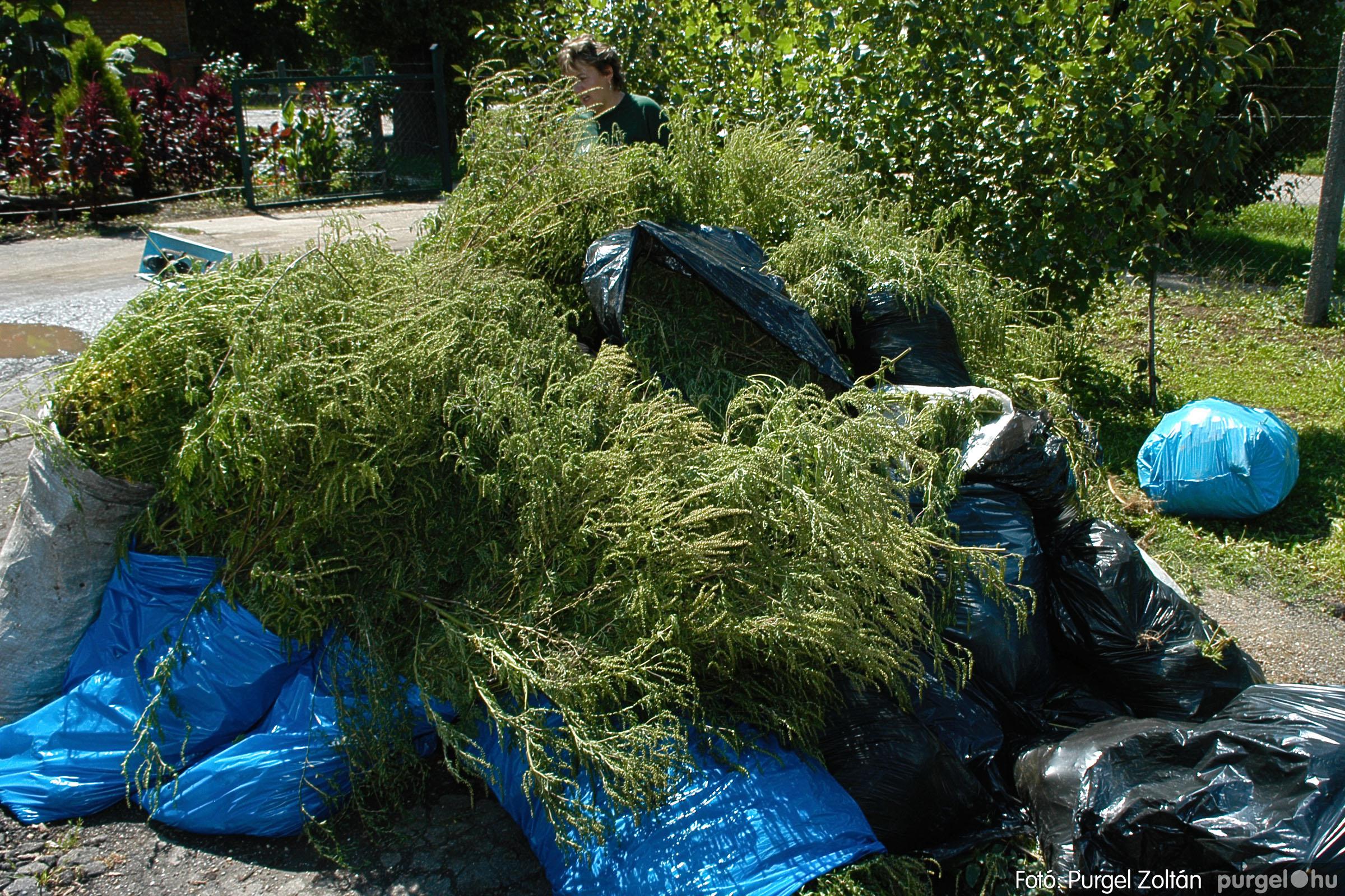 2005.08.20. 159 Szegvári falunapok 2005. - 2. nap - Fotó:PURGEL ZOLTÁN© DSC_0181q.jpg