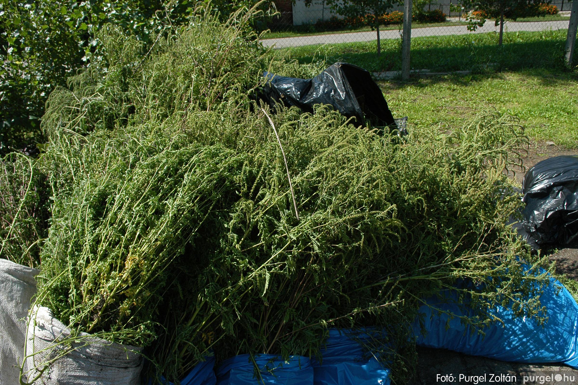 2005.08.20. 162 Szegvári falunapok 2005. - 2. nap - Fotó:PURGEL ZOLTÁN© DSC_0184q.jpg