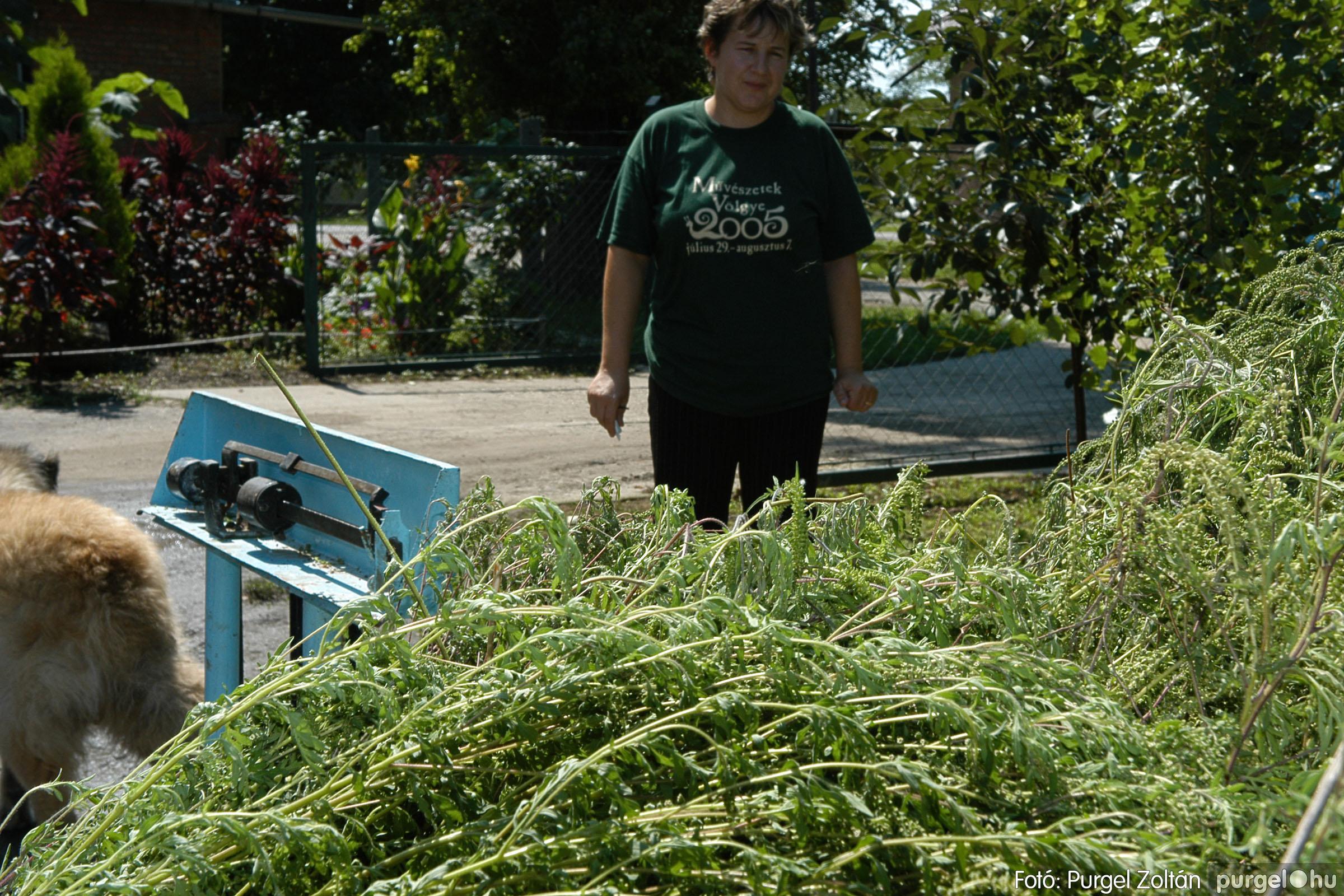 2005.08.20. 157 Szegvári falunapok 2005. - 2. nap - Fotó:PURGEL ZOLTÁN© DSC_0179q.jpg